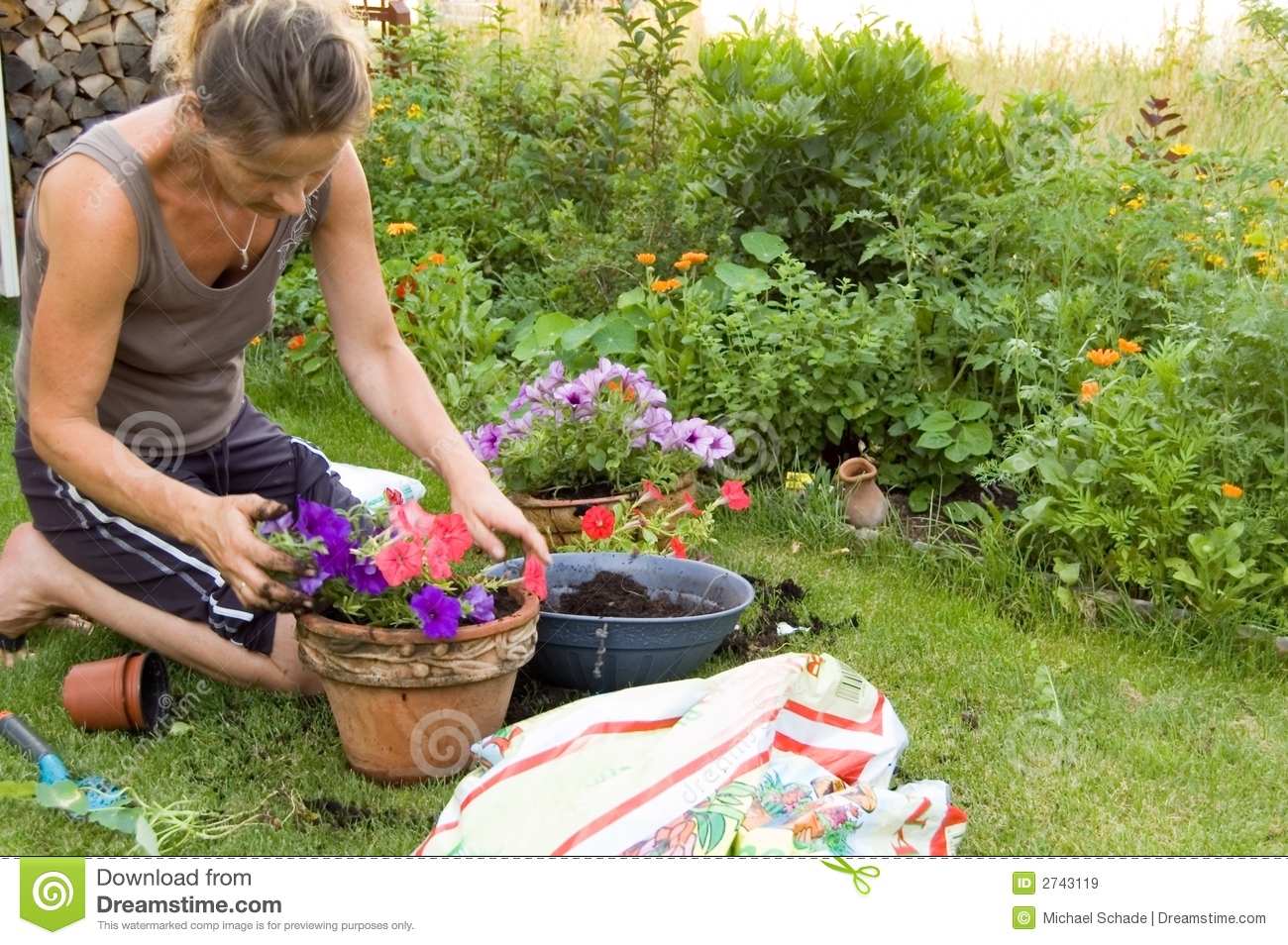 Gardening Royalty Free Stock Images Image 2743119
