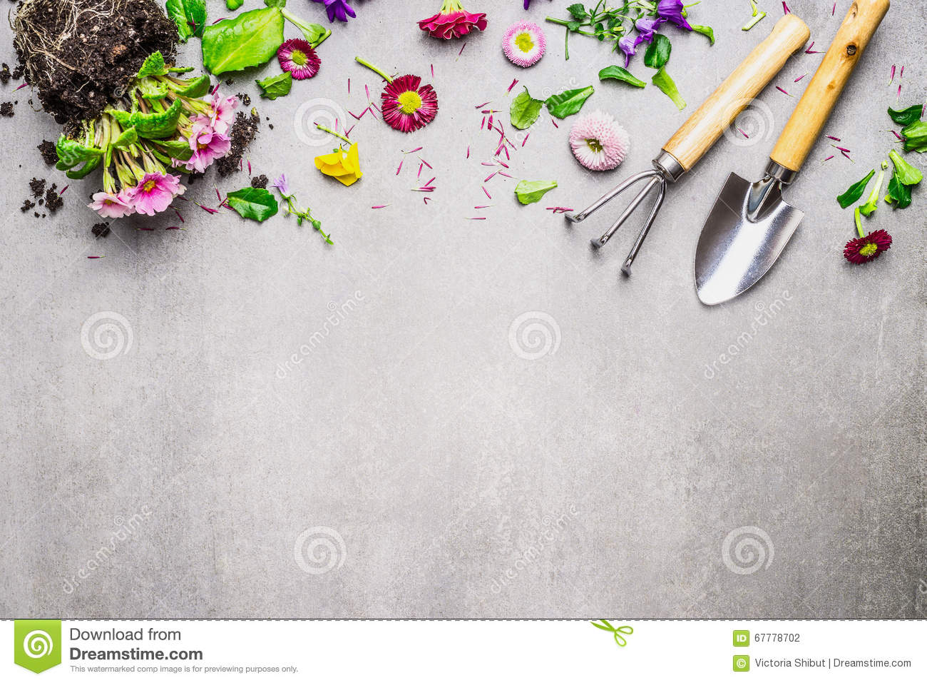 Gardening Border With Various Flowers Plant And Garden Tools On Gray Stone Background Top View