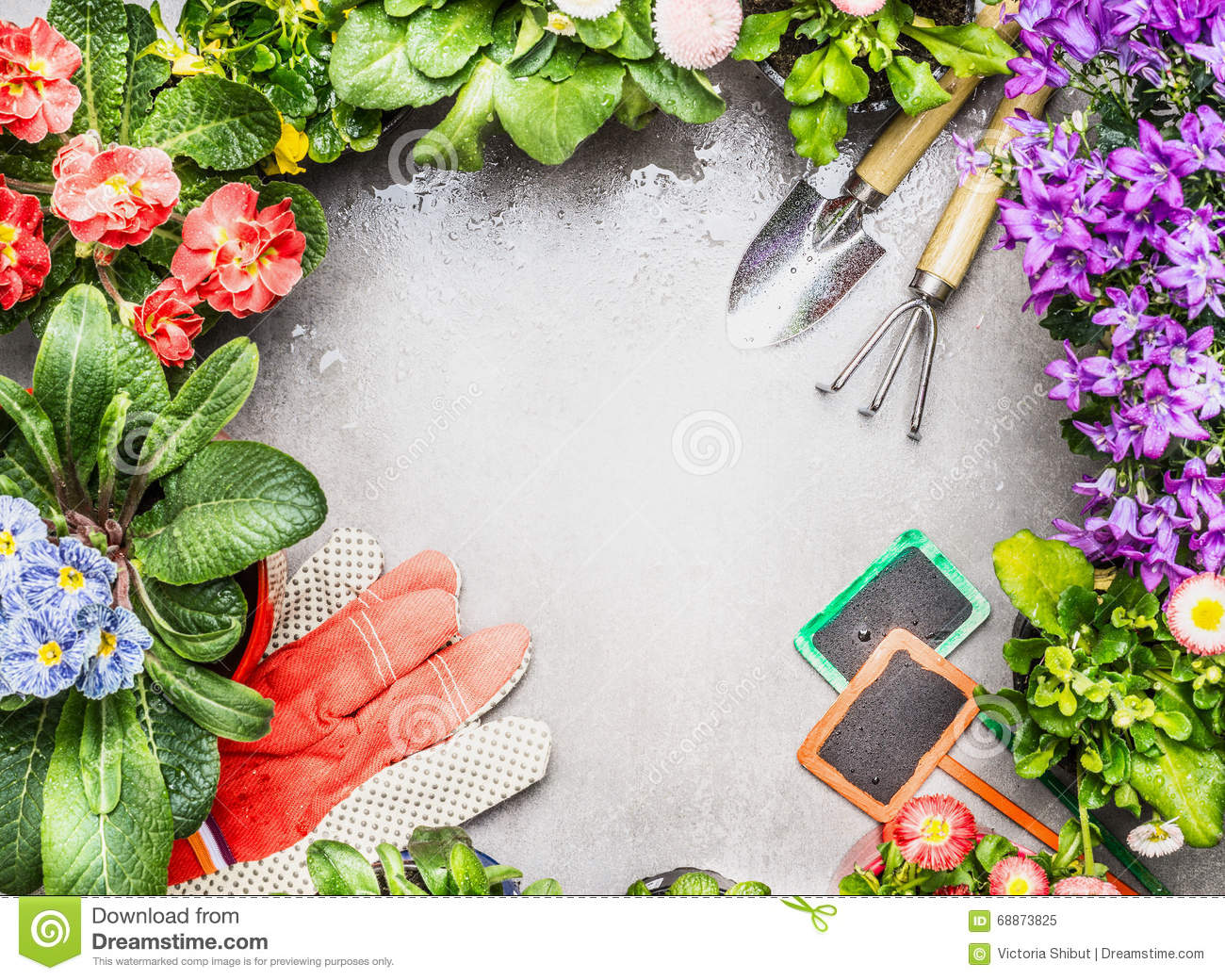 Gardening Frame With Garden Tools Fresh Lovely Garden Flowers In