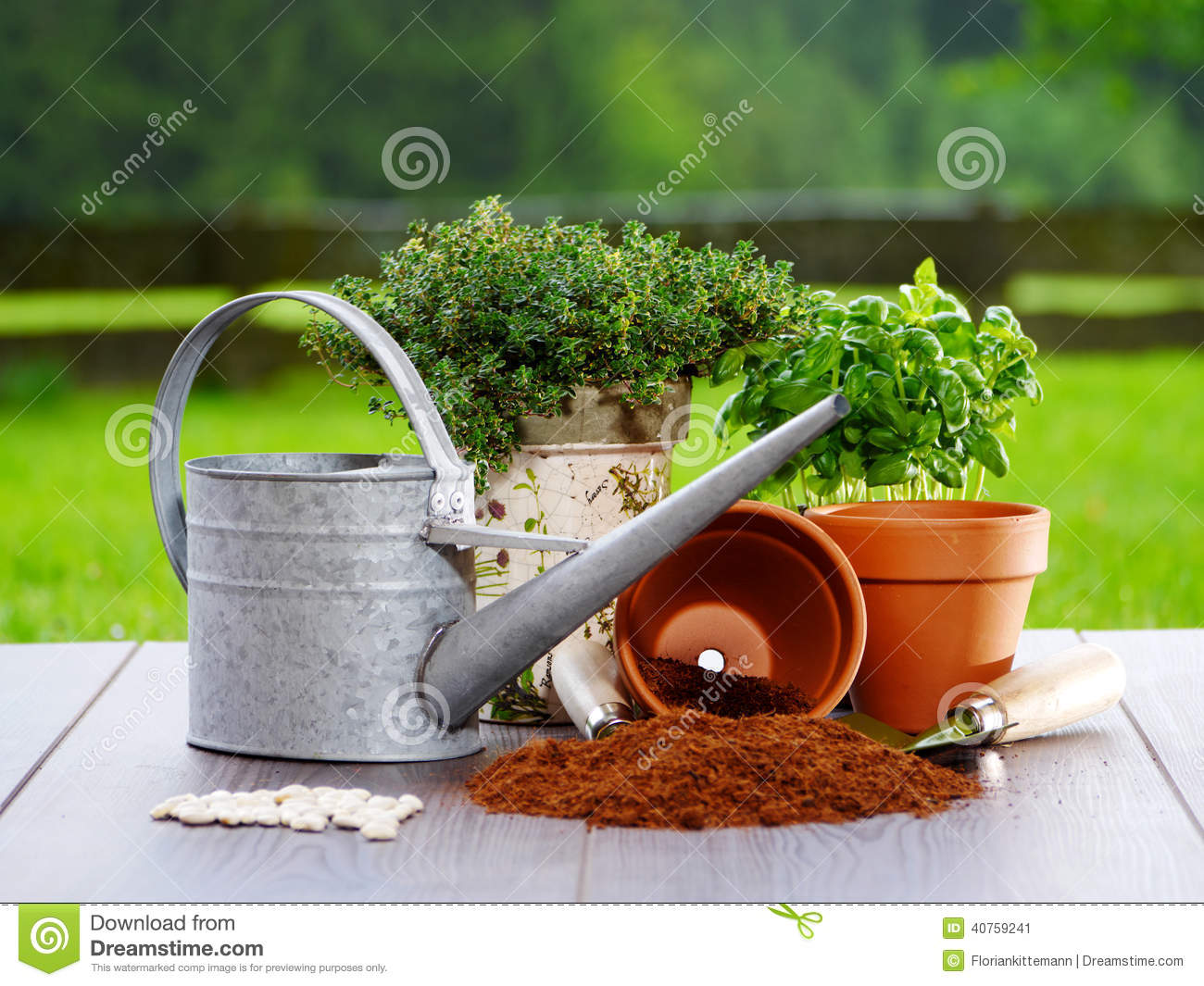 Gardening items stock photo image 40759241 for Things used for gardening