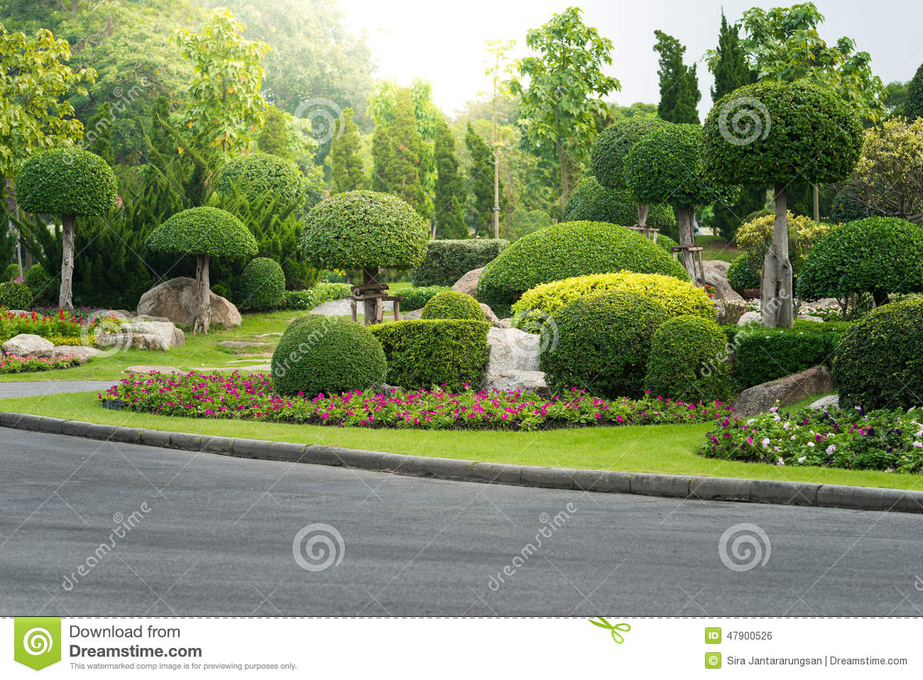 Gardening And Landscaping With Decorative Trees Stock Photo - Image ...