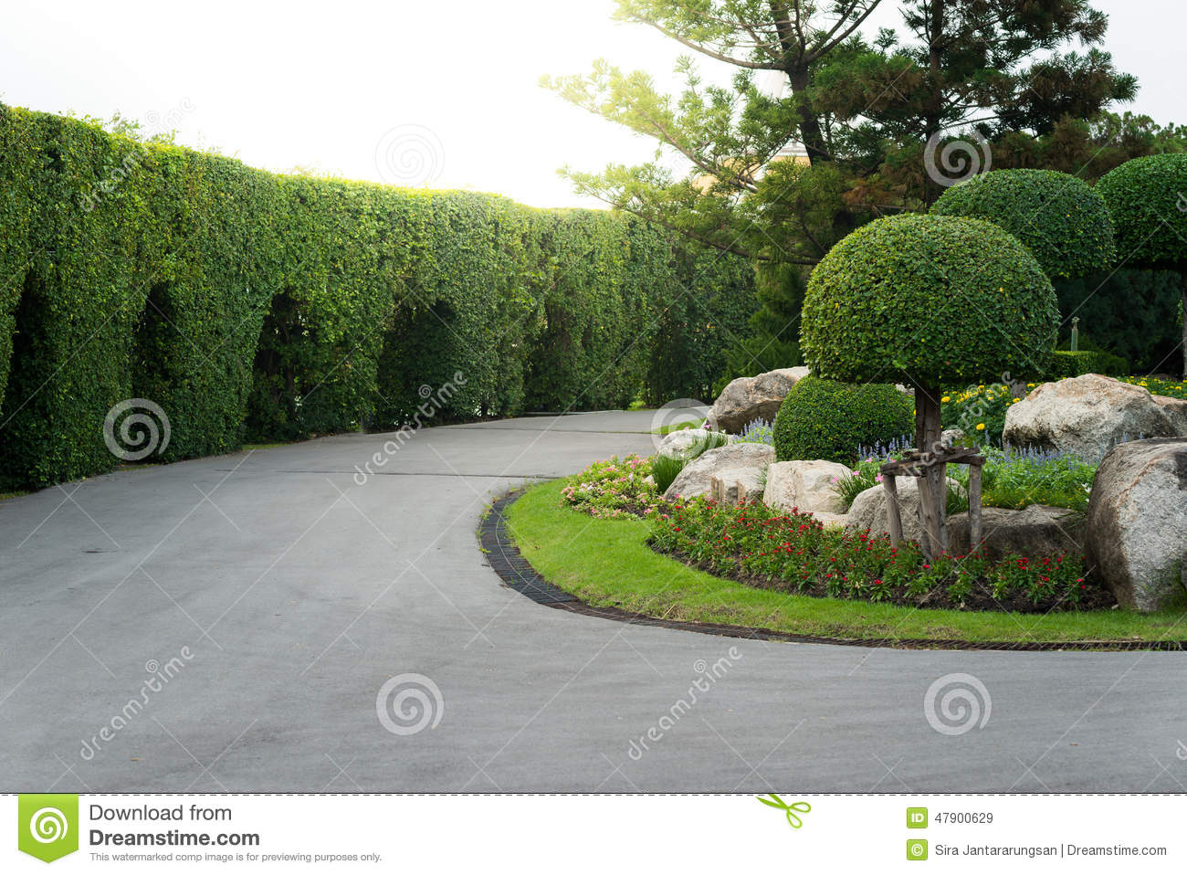 Gardening and landscaping with decorative trees stock photo image 47900629 - Decorative small trees for landscaping ...