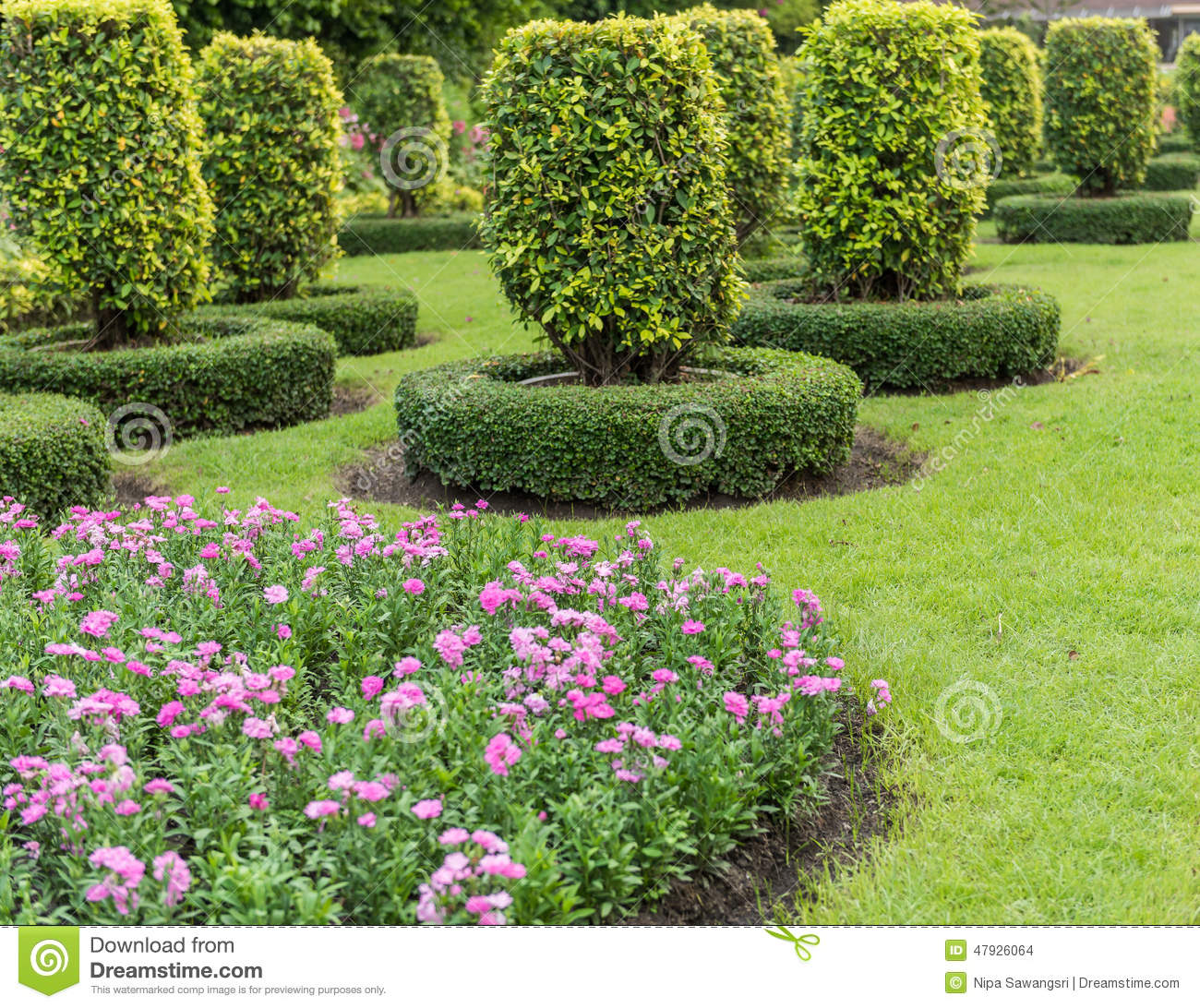 Gardening and landscaping with decorative trees stock photo image 47926064 - Decorative small trees for landscaping ...