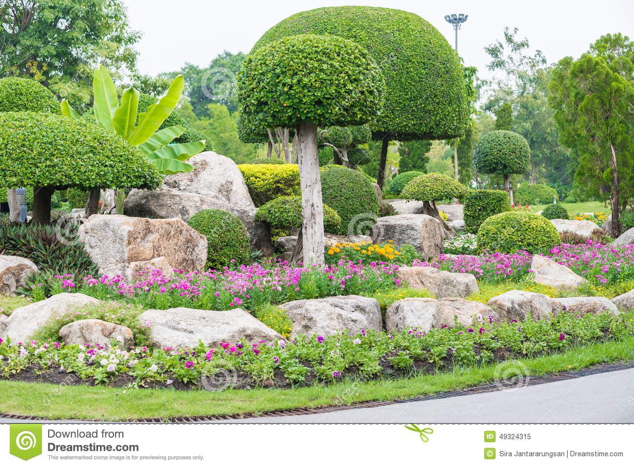 Gardening and landscaping with decorative trees stock photo image 49324315 - Decorative small trees for landscaping ...