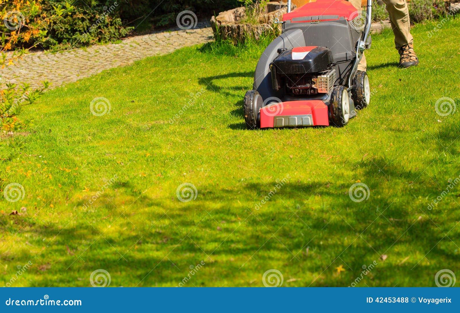 Gardening Mähender grüner Rasen mit rotem Rasenmäher