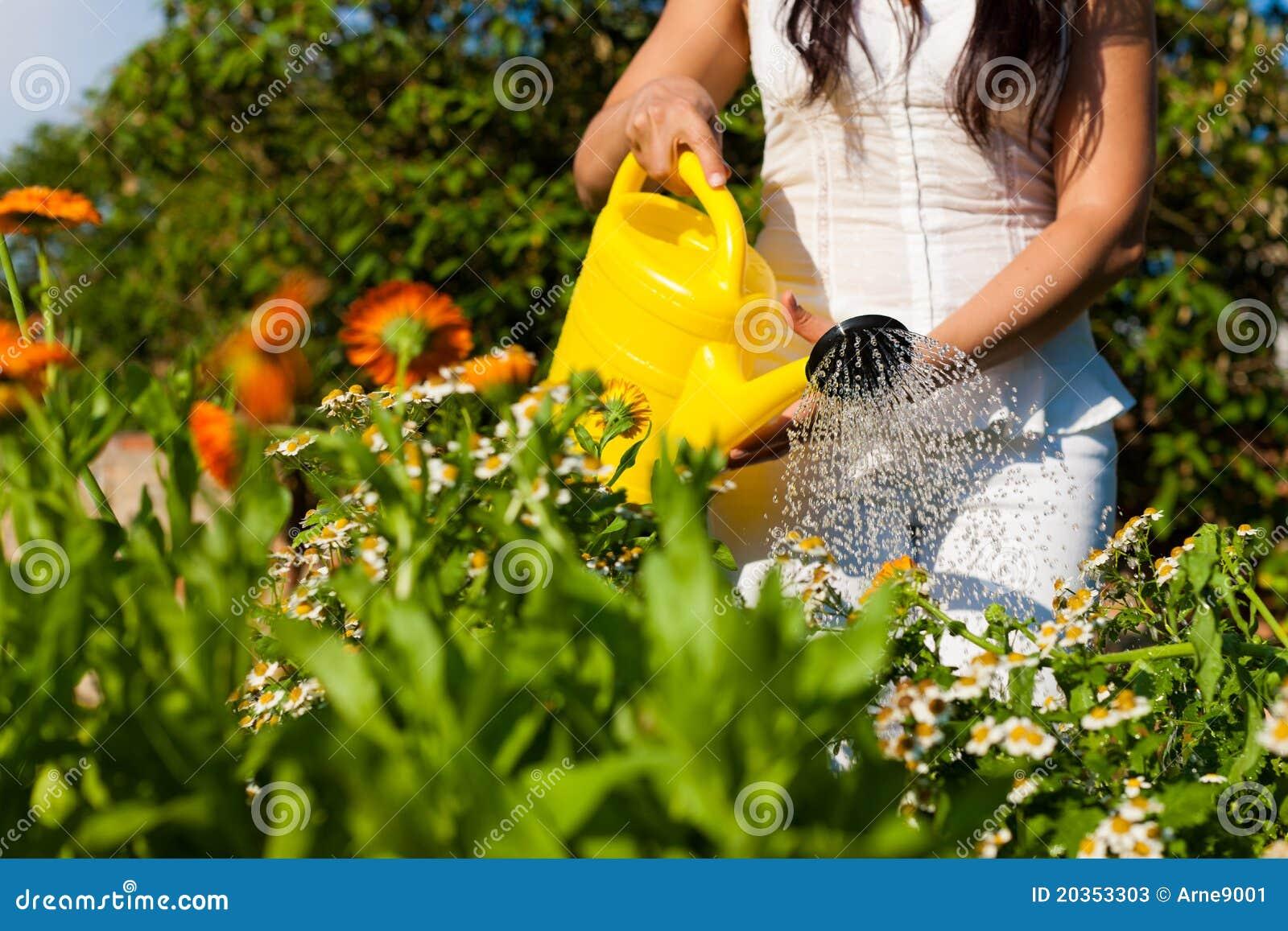 Gardening In Summer   Woman Watering Flowers. Domestic, Hobby.