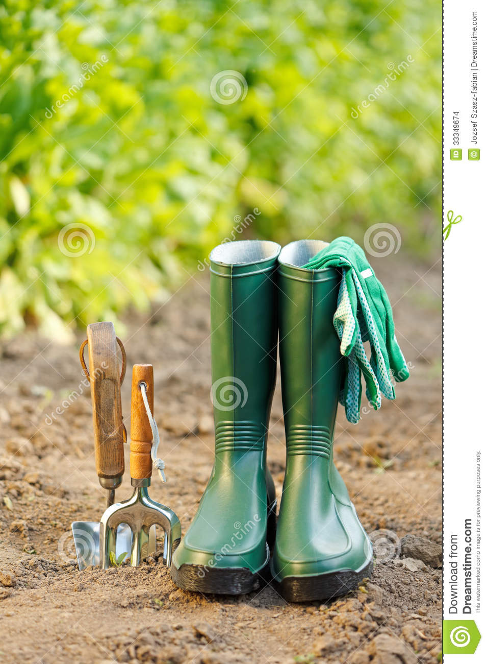 Gardening tools and equipment stock images image 33349674 for Tools and equipment in planting