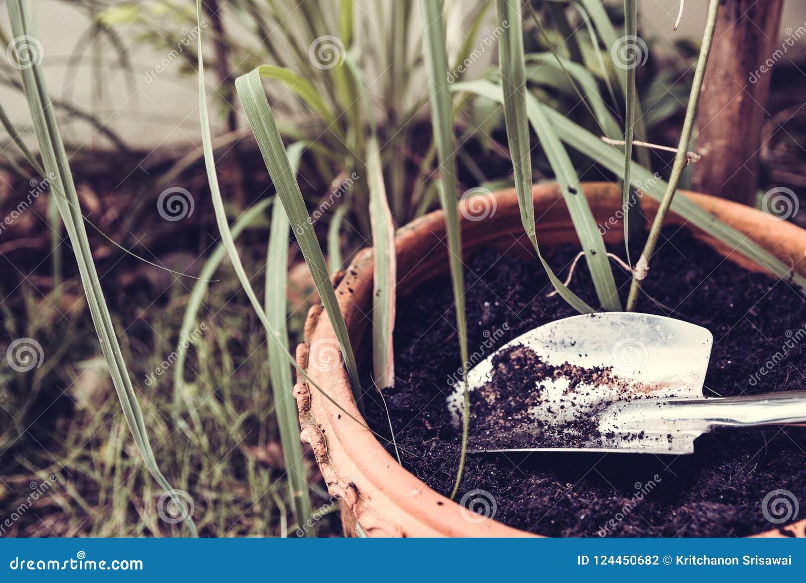 Gardening tools on fertile soil