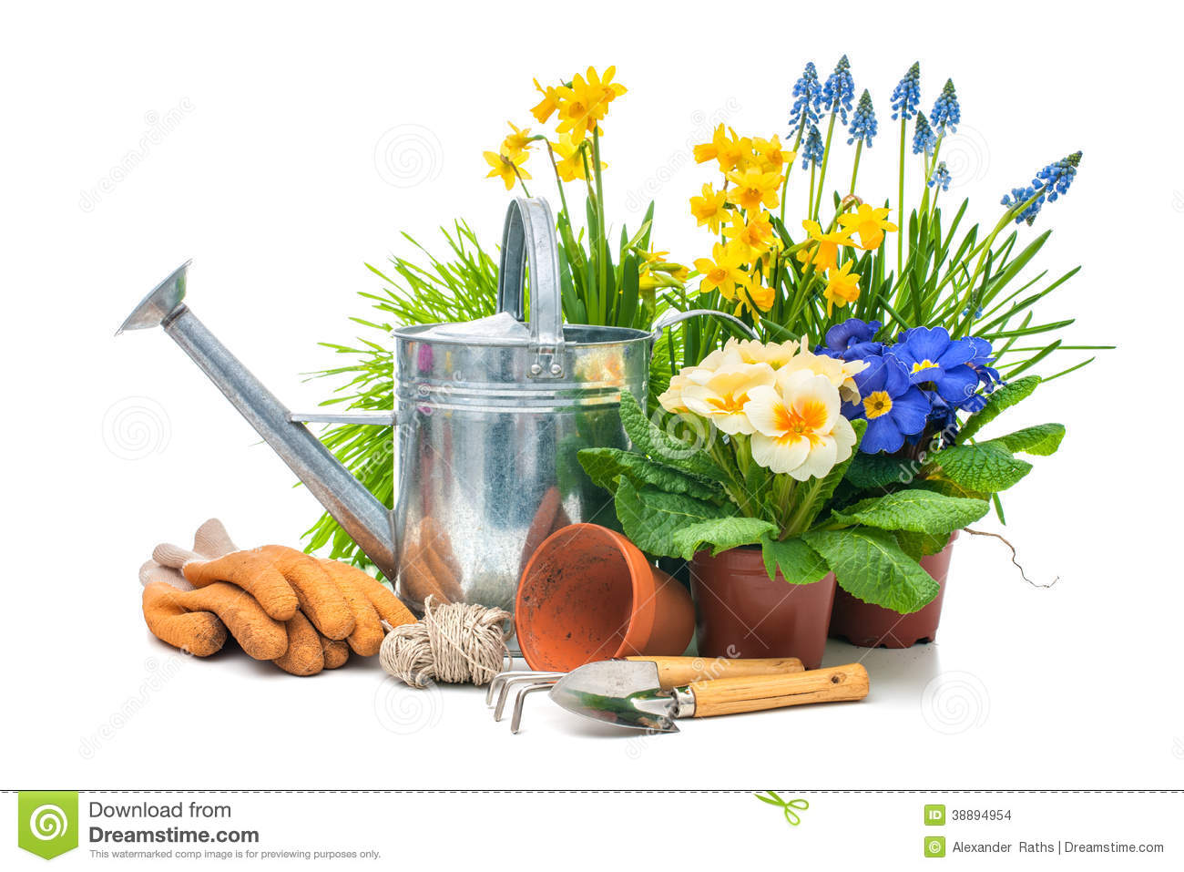 Gardening Stock Photo Image 38894954