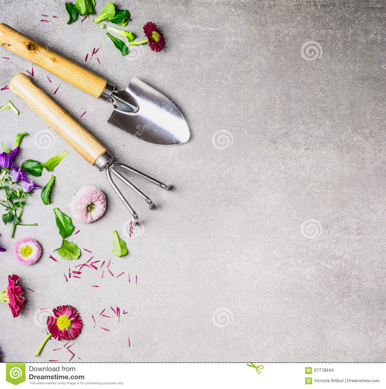 Gardening tools and flowers plant on gray stone background for Gardening tools victoria