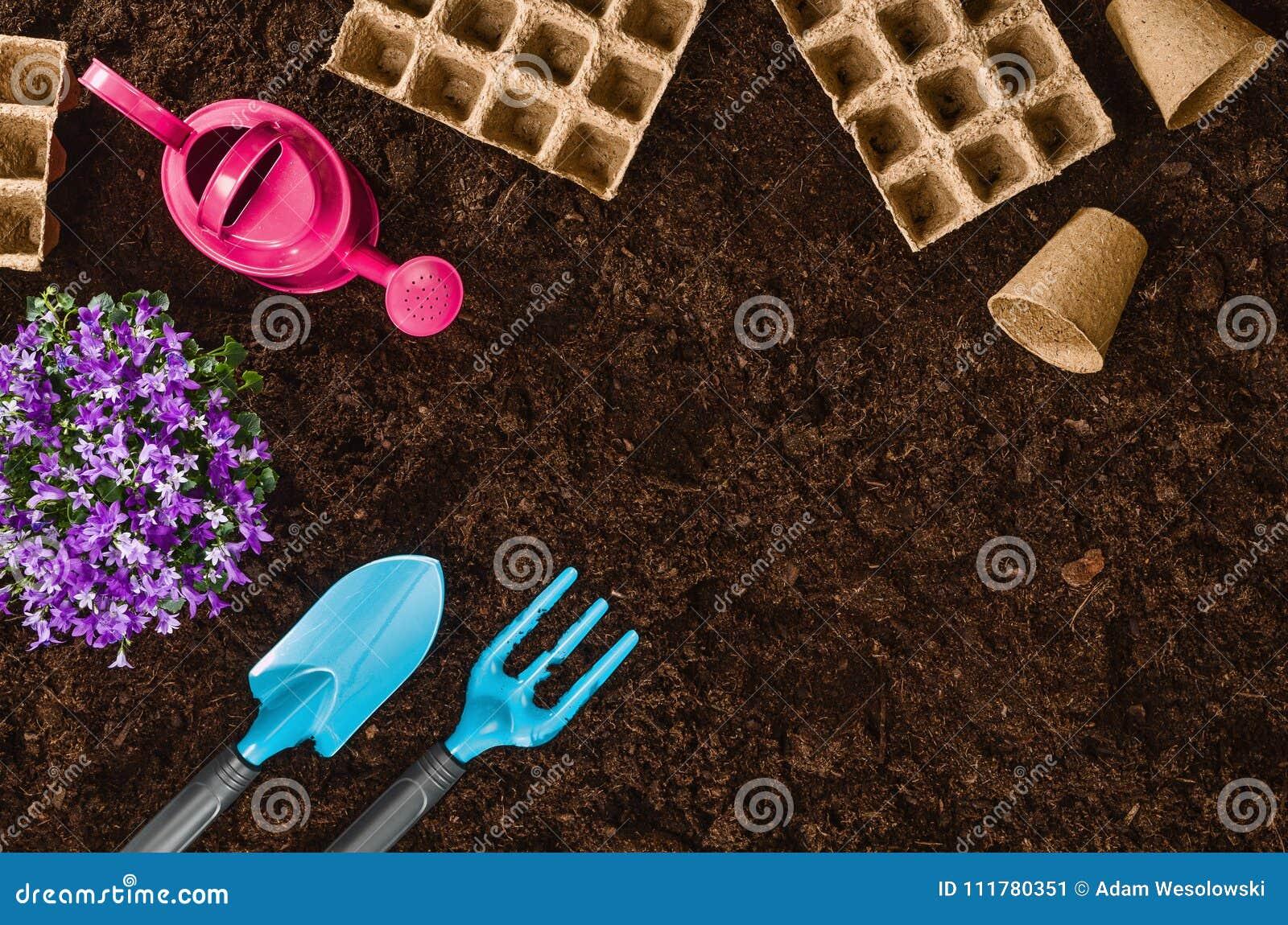 Gardening tools on garden soil texture background top view