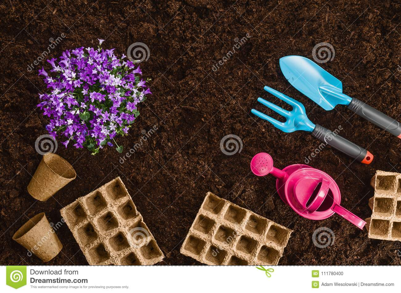 Gardening tools on garden soil texture background top view