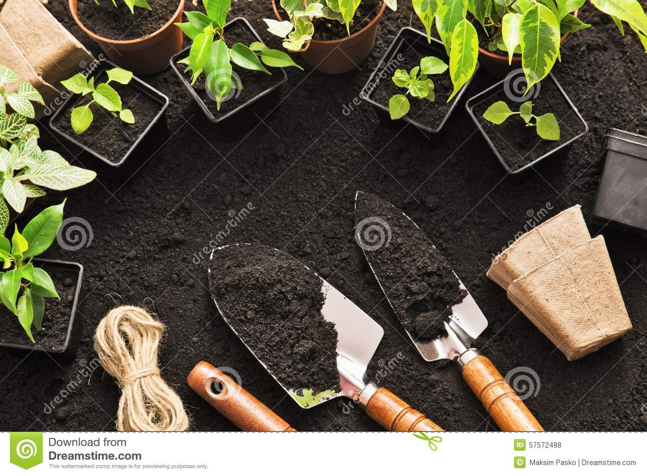 Gardening tools for trees and plants on white table macro for Gardening tools used in planting