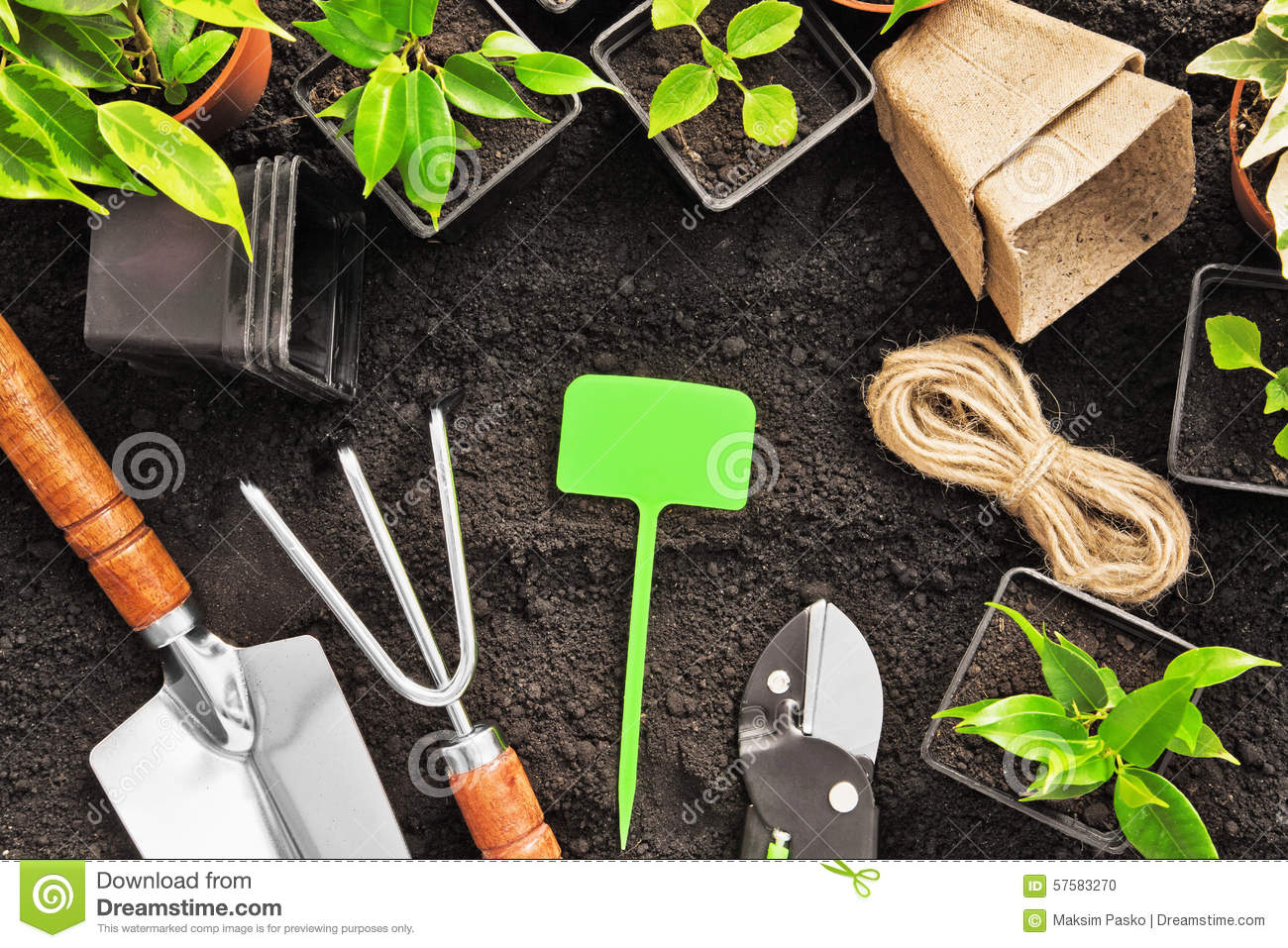 Gardening tools stock image 66395779 for Gardening tools cartoon