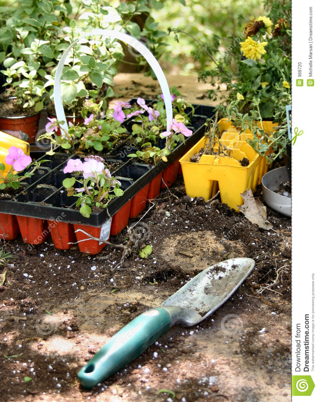 Gardening tools and spring plants stock photo image 968720 for Gardening tools used in planting