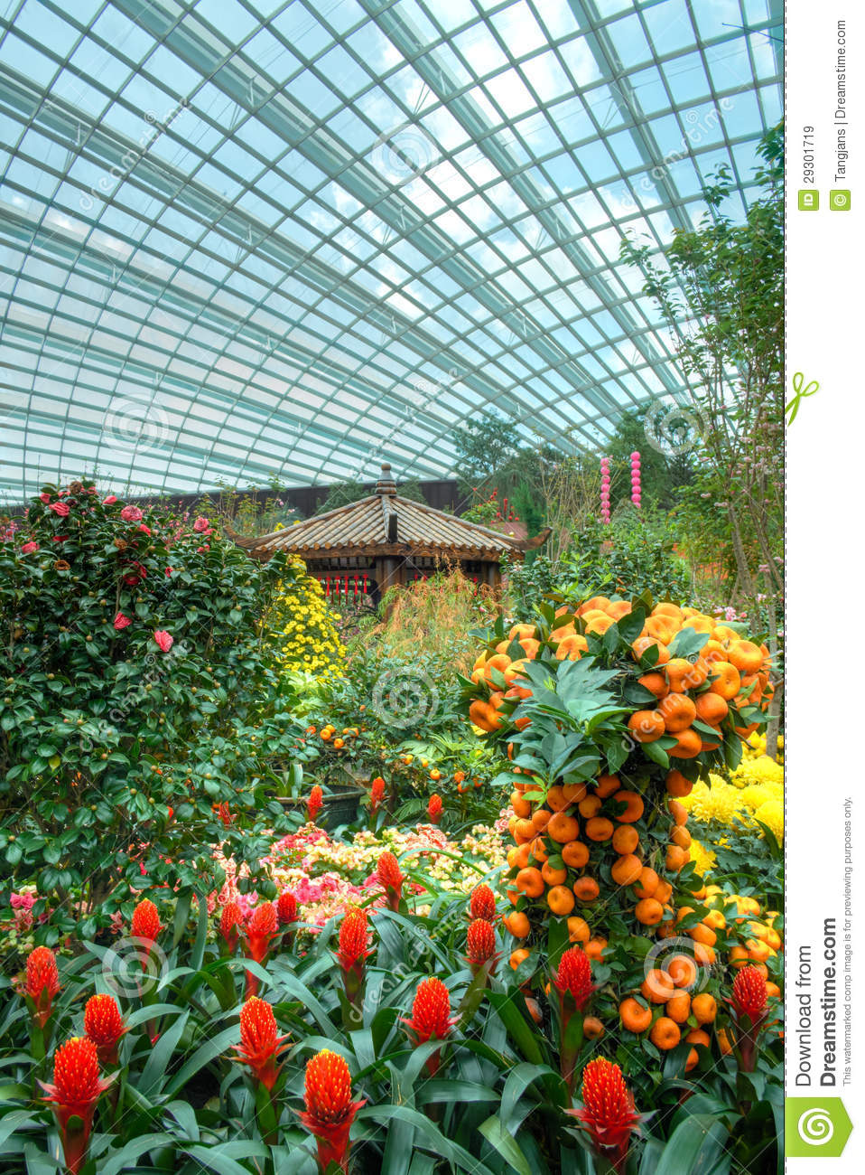 Gardens By The Bay Flower Dome Chinese New Year Royalty Free