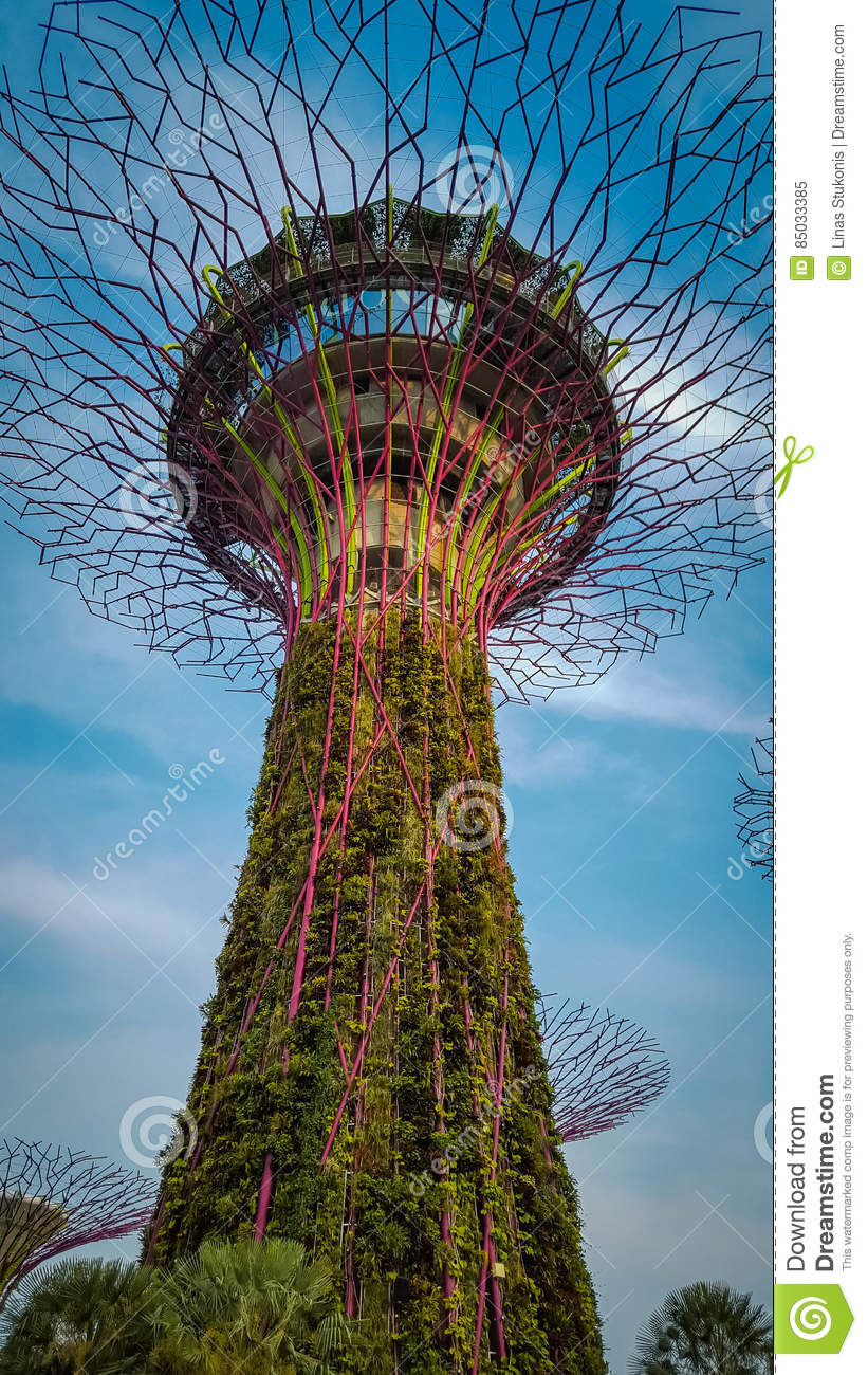 Gardens By The Bay In Singapore Stock Image - Image of icon, asia ...