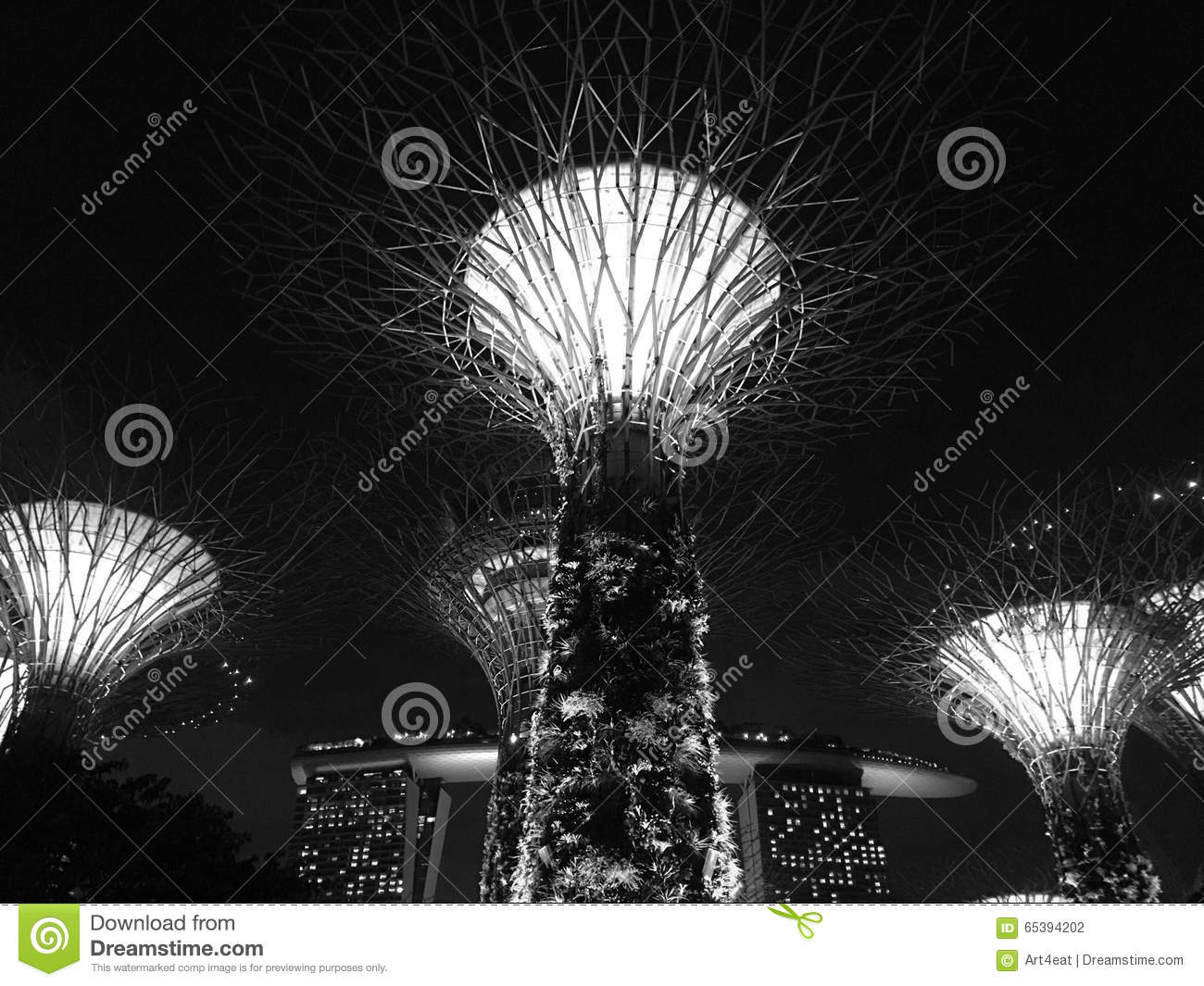 Supertree Grove In Garden By The Bay Singapore