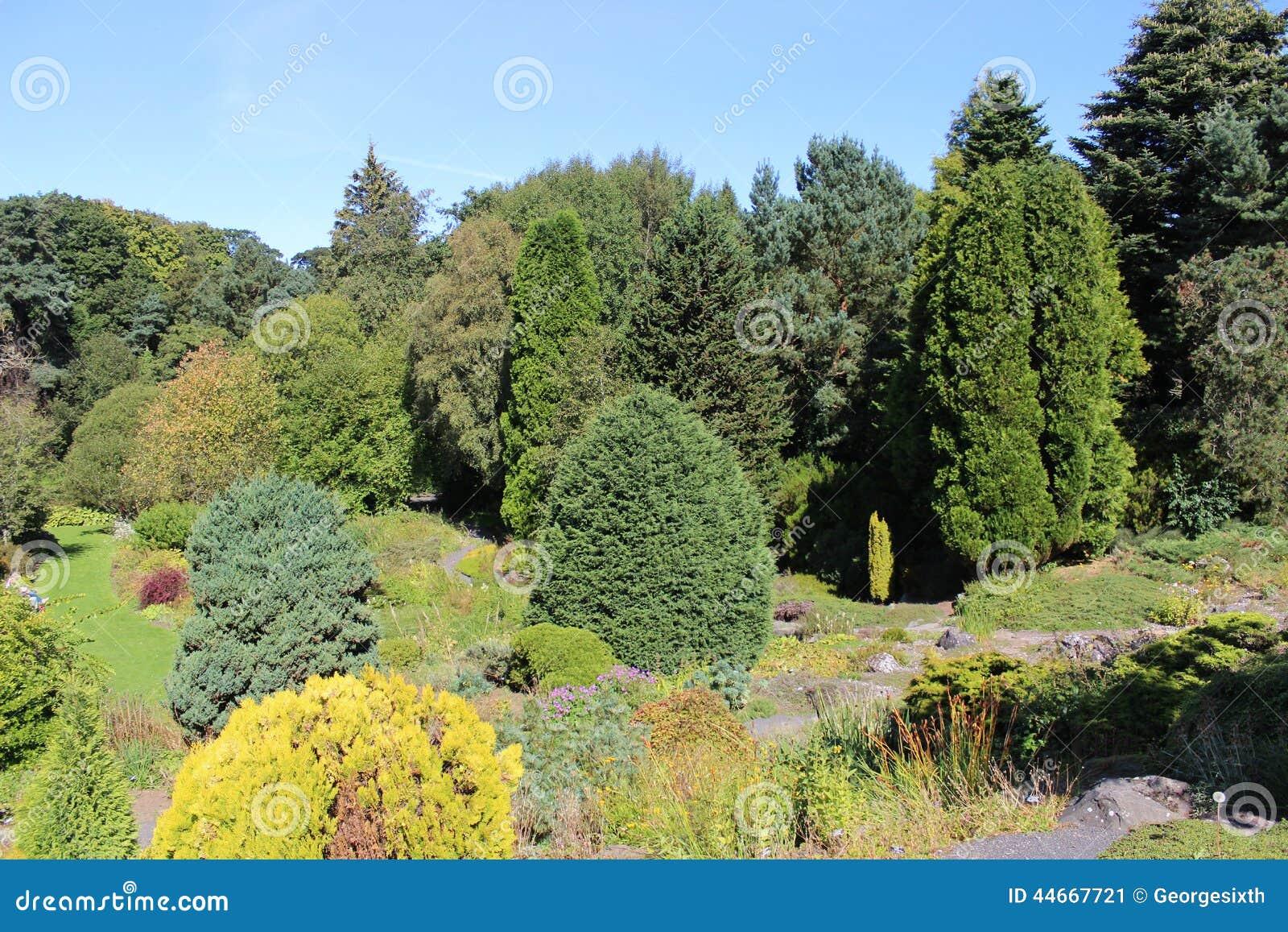 Gardens st andrews botanic garden st andrews stock photo for Garden trees scotland