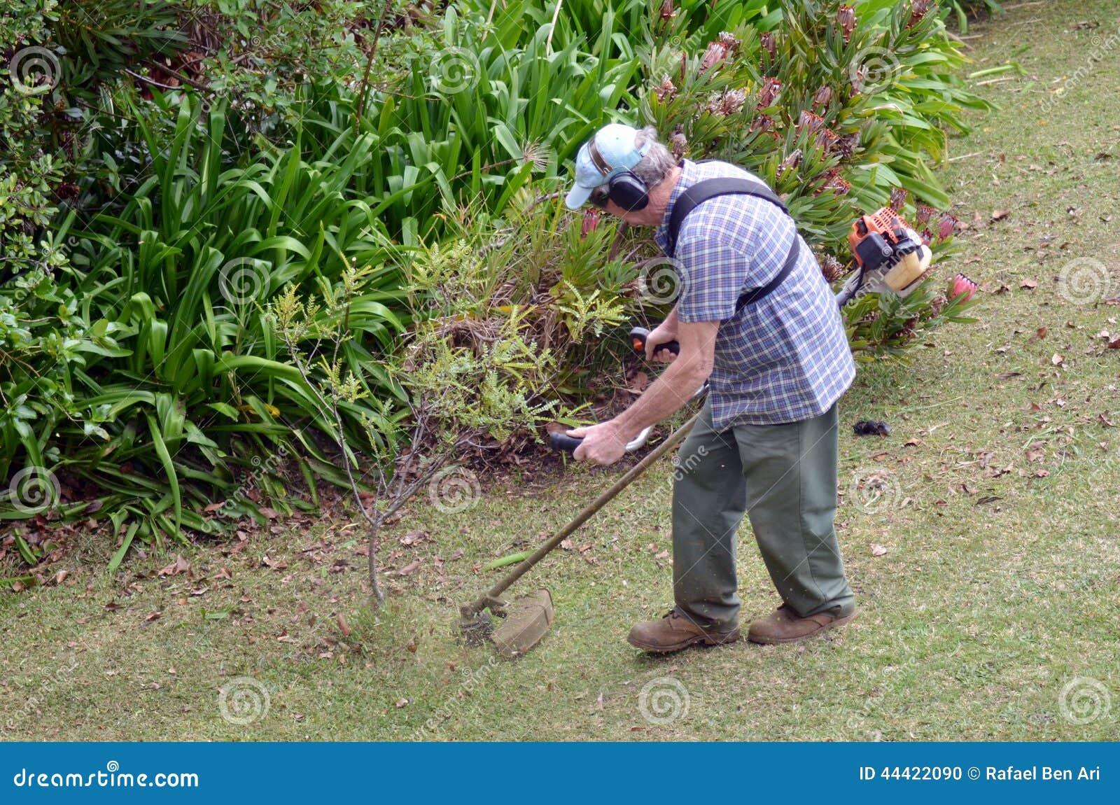 Gardner que siega la hierba