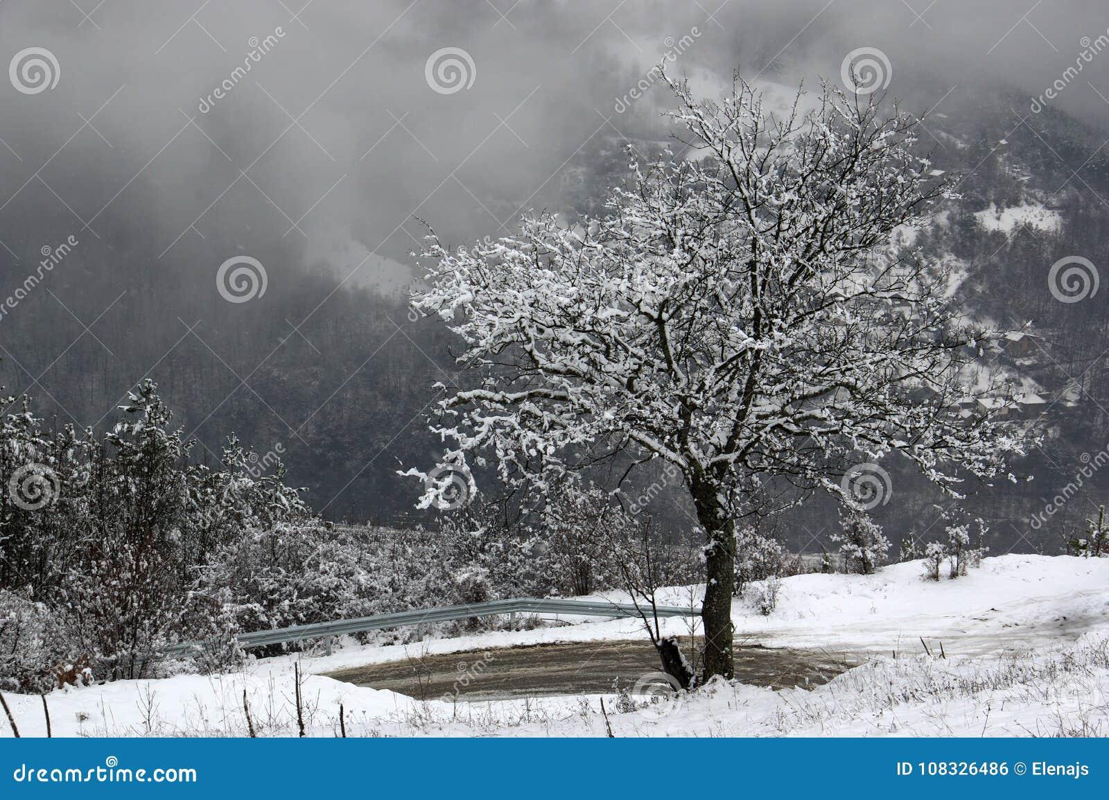 Garganta del río de Iskar, cerca de Svoge, Bulgaria - imagen del invierno