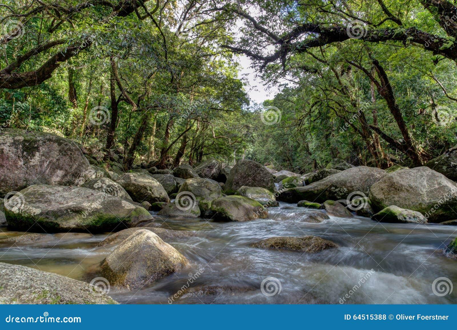 Garganta del río de Mossman