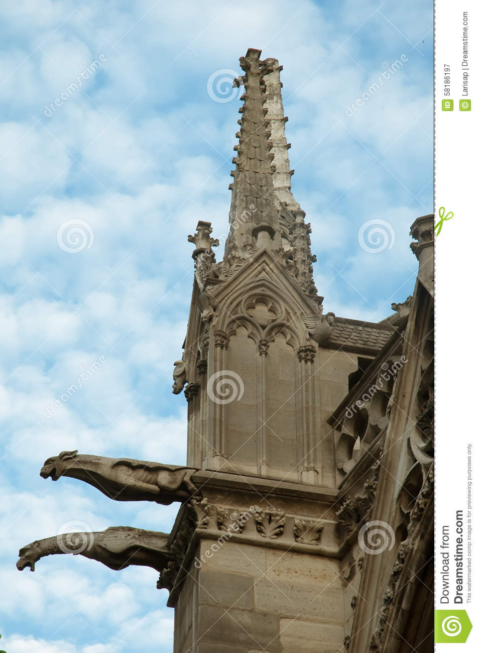 the gargoyles of notre dame cathedral paris stock photo image 58186197. Black Bedroom Furniture Sets. Home Design Ideas