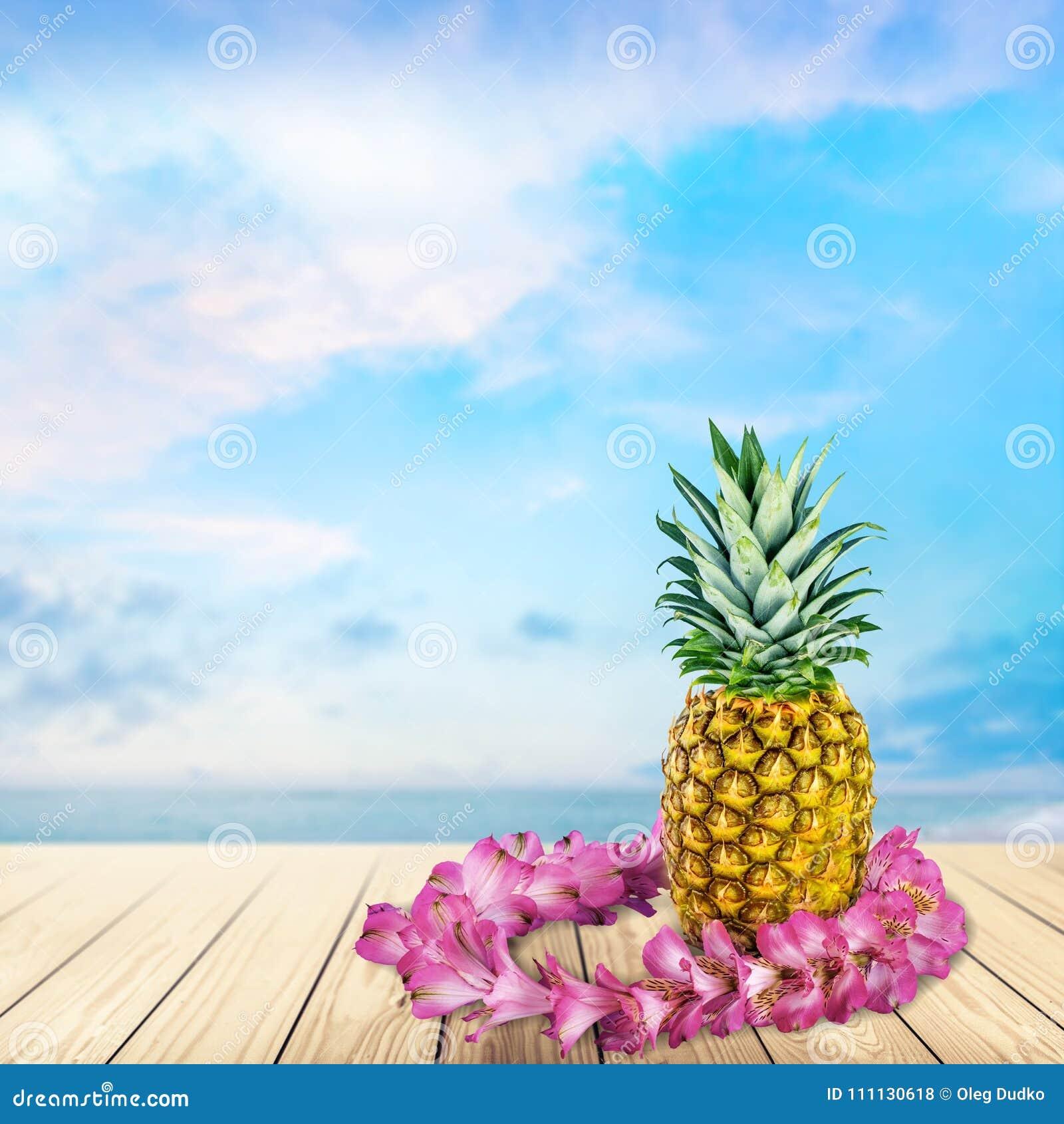 Garland stock photo image of flower pineapple costa 111130618 garland hawaiian culture pineapple flower food caribbean culture fruit izmirmasajfo