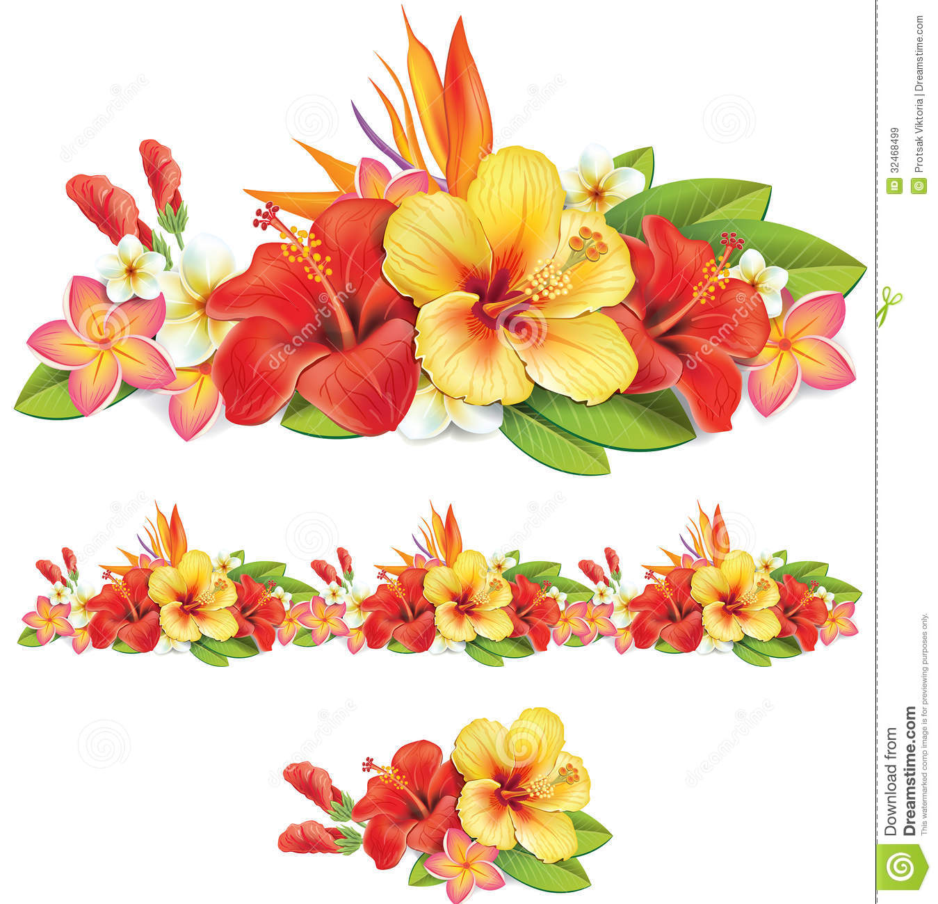 Garland Of Tropical Flowers Stock Vector Illustration Of Petal