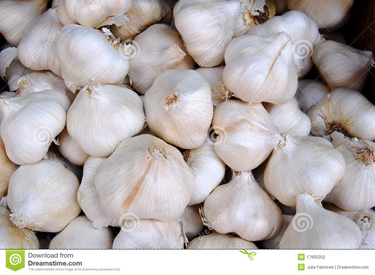 garlic allium sativum as a major Abstract: an important and oldest plant, garlic (allium sativum l), cultivated since time immemorial for its use as food and medicine, has many important constituents which requires attention for its many health benefits.