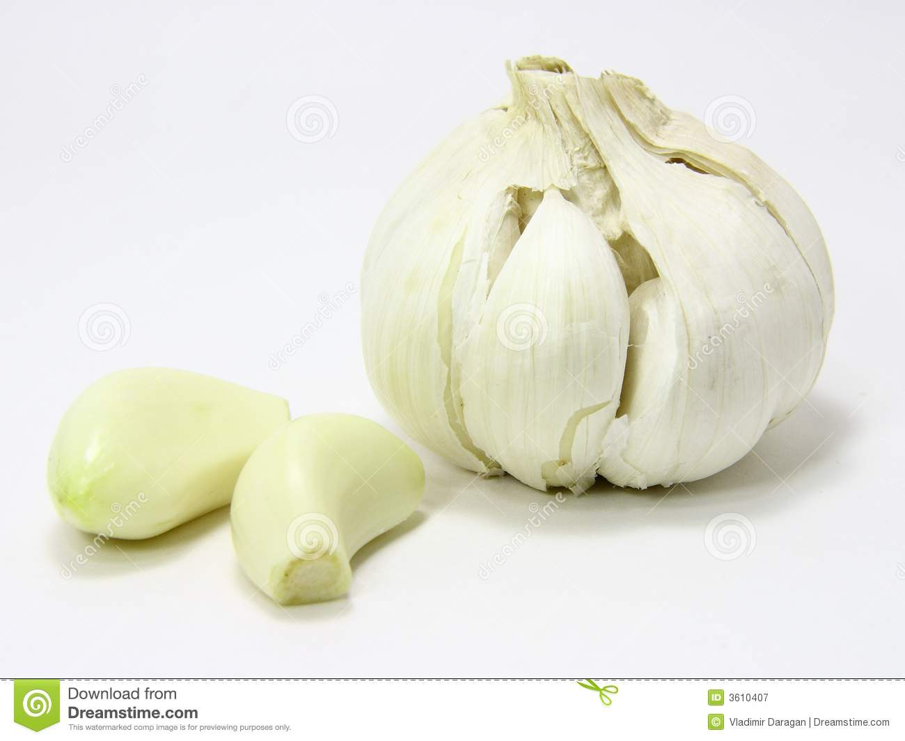 Garlic Bulb And Two Cloves Royalty Free Stock Photography ...