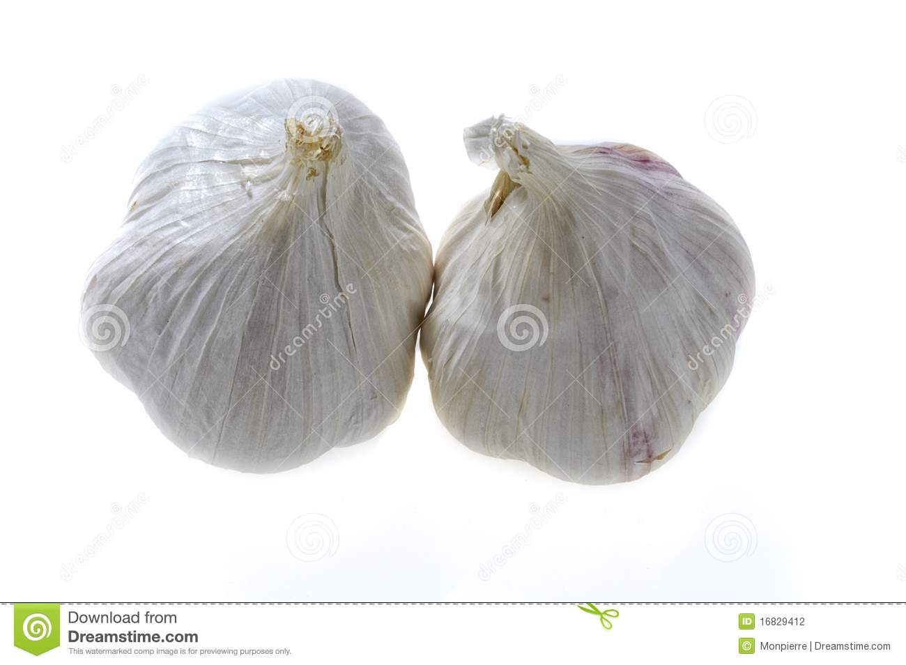 Garlic Cloves Stock Photography - Image: 16829412