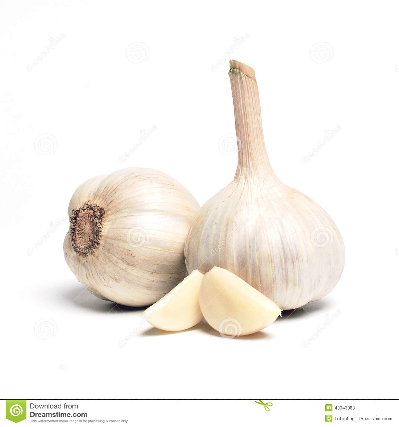 Download Garlic stock image. Image of clean, fresh, chinese, object - 43043083