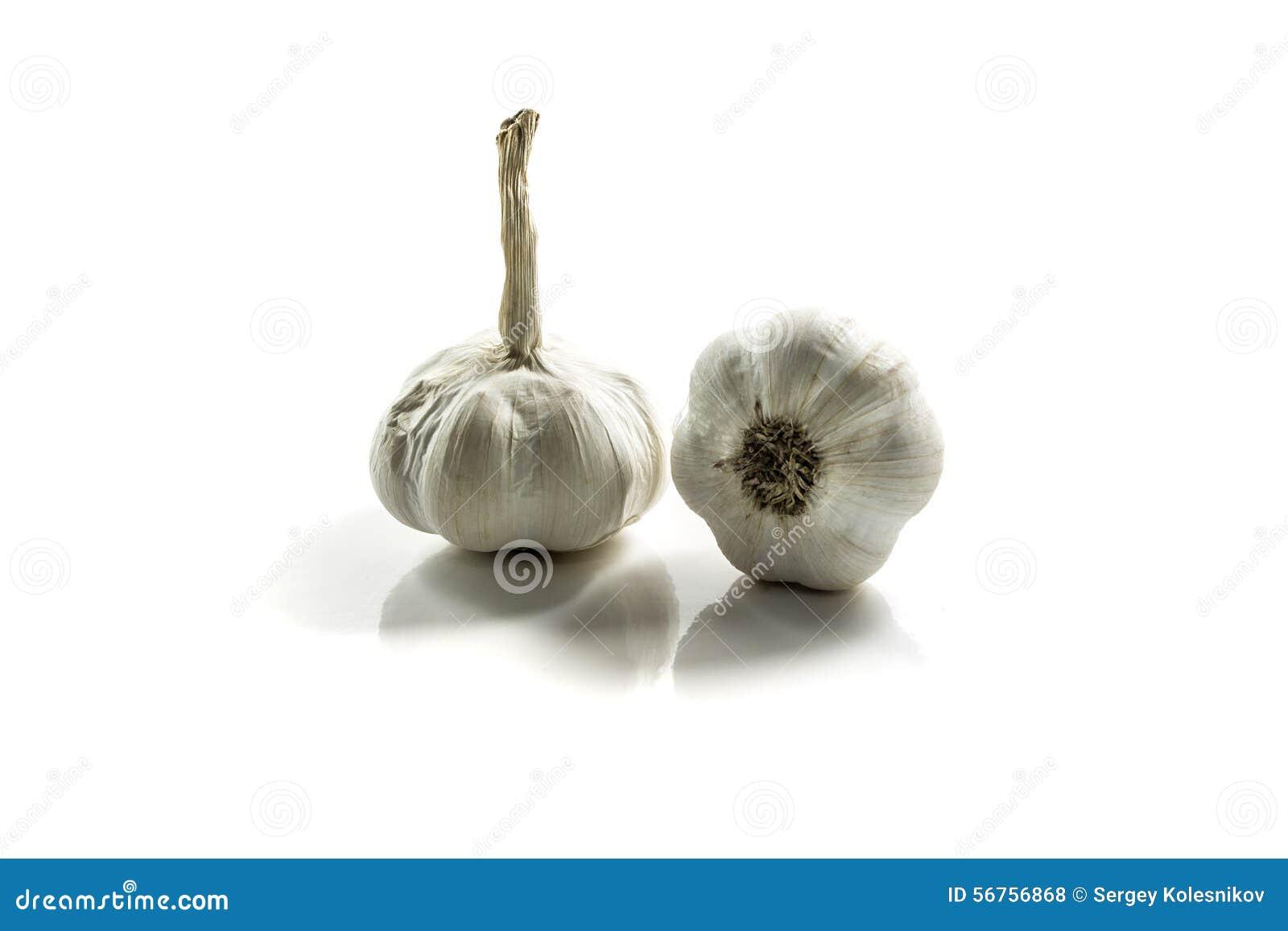 garlic essay