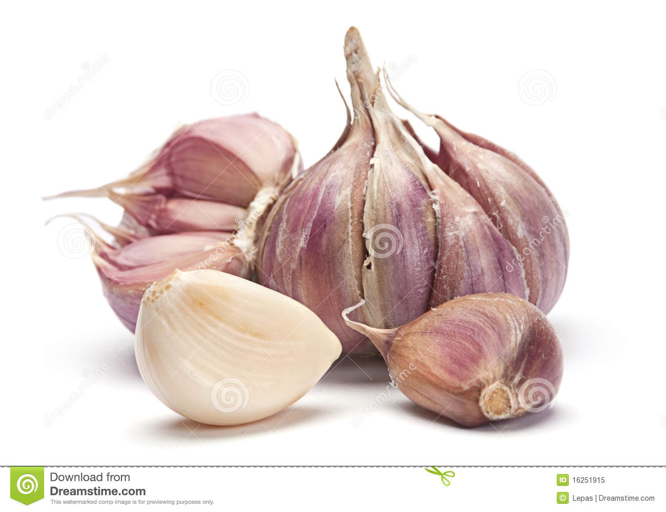 garlic vegetable royalty free stock photo image 16251915