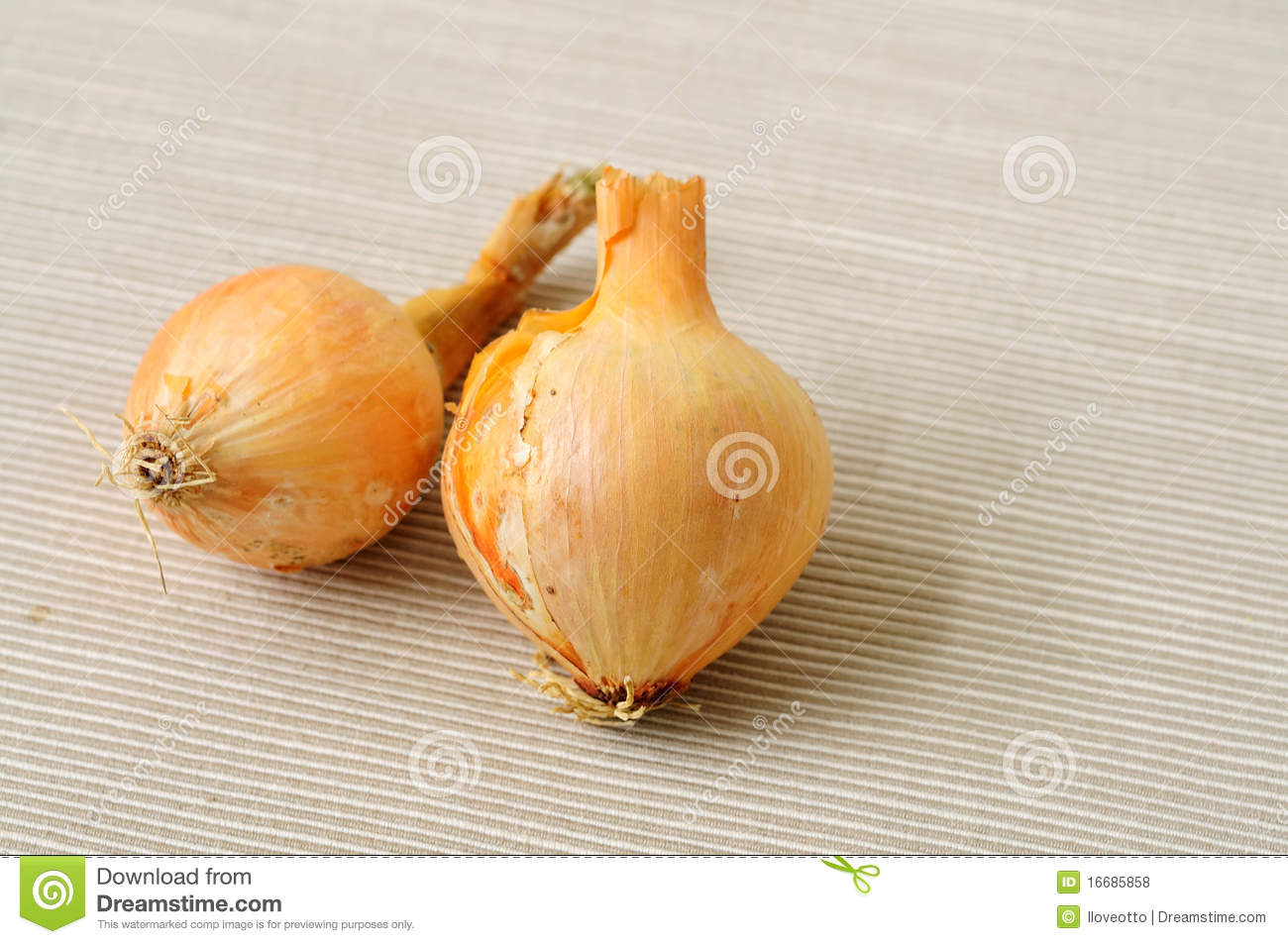 garlic vegetable royalty free stock photos image 16685858