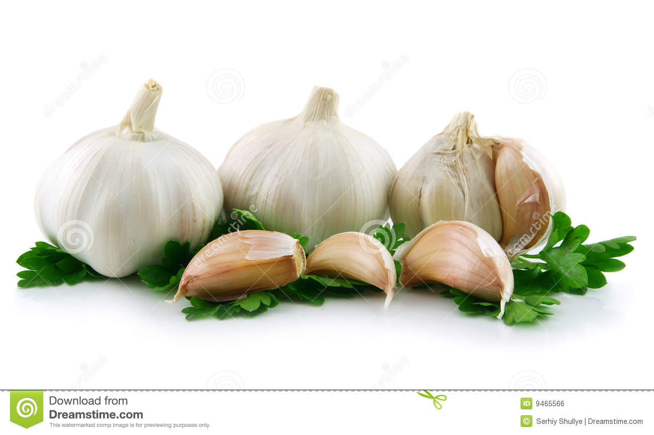 garlic vegetable with parsley leaves isolated royalty free