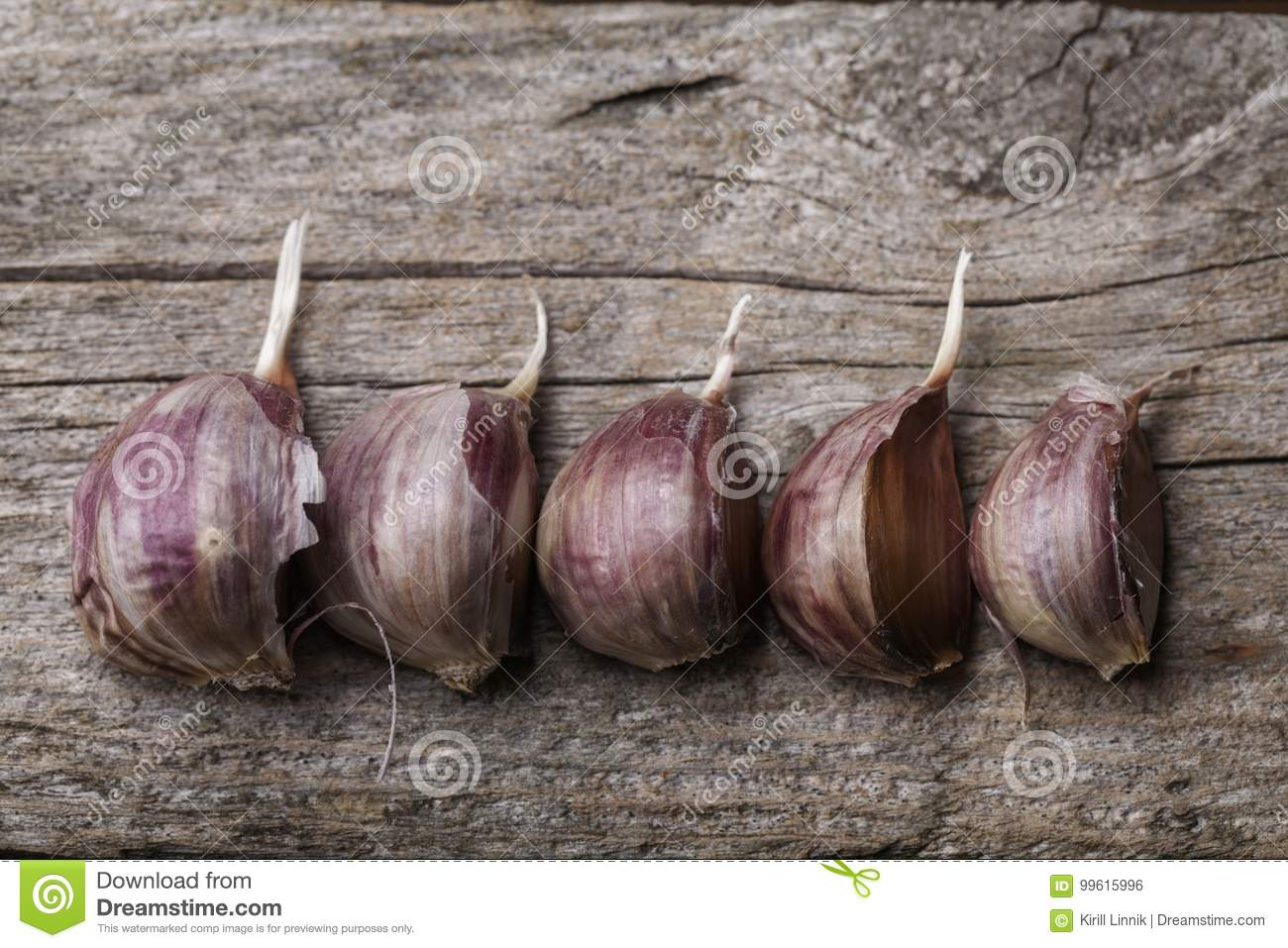 Download Garlic on the table stock photo. Image of ingredient - 99615996