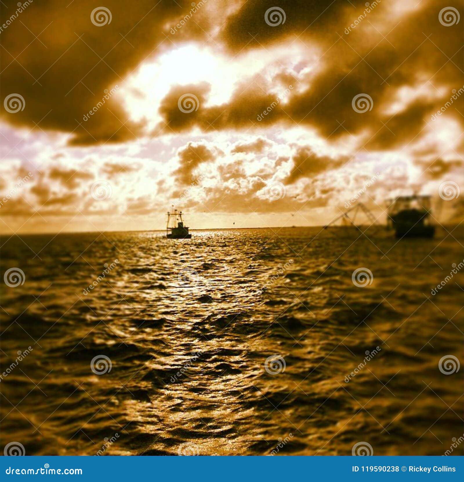 Garnelenboote in der Bucht
