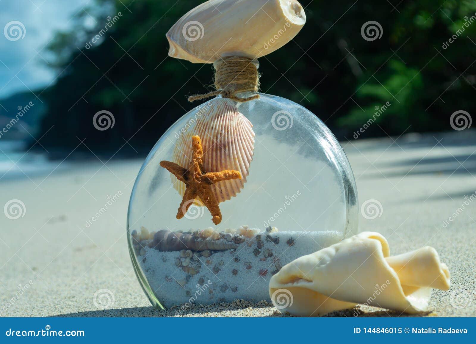 Garrafa com escudo e estrela do mar em uma praia bonita