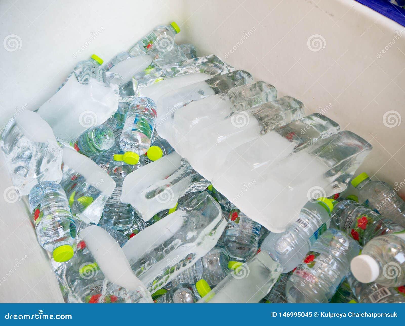 Garrafas de água embebidas em umas cubetas de gelo, Banguecoque, Tailândia