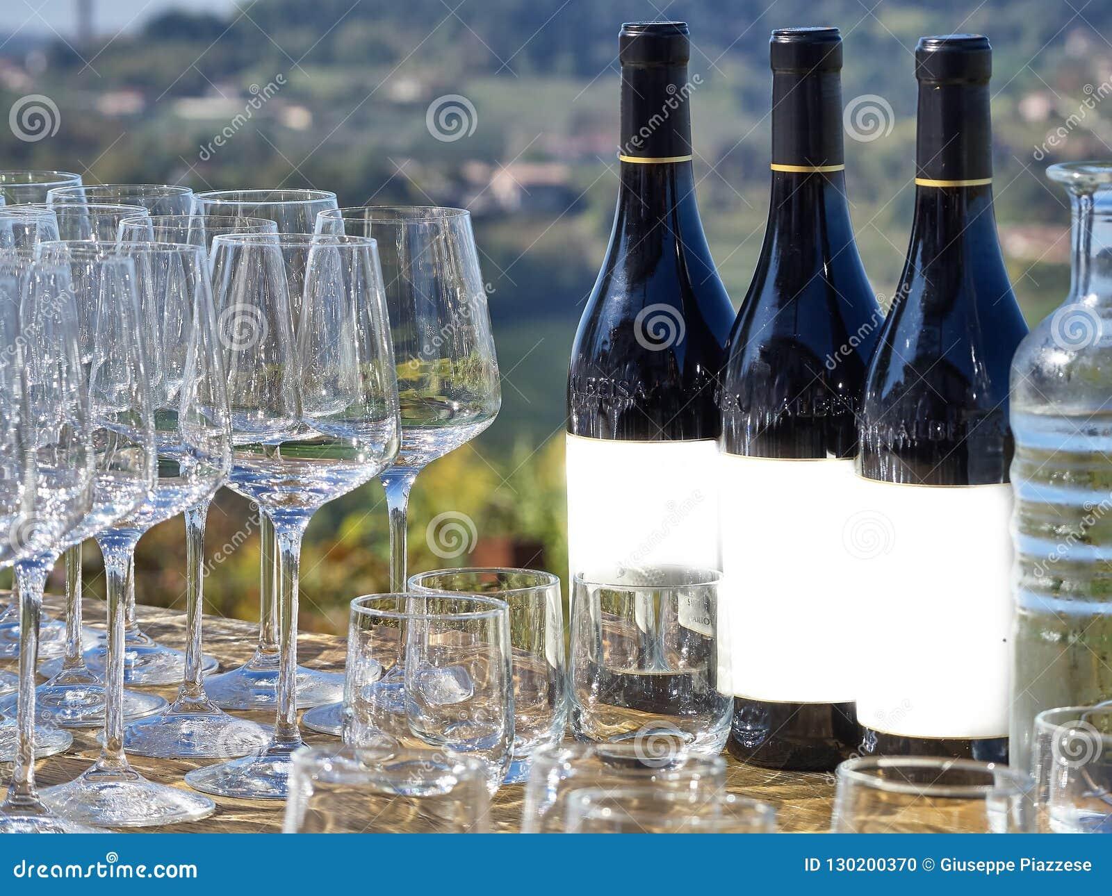 Garrafas do vinho e dos vidros com o campo de Langhe