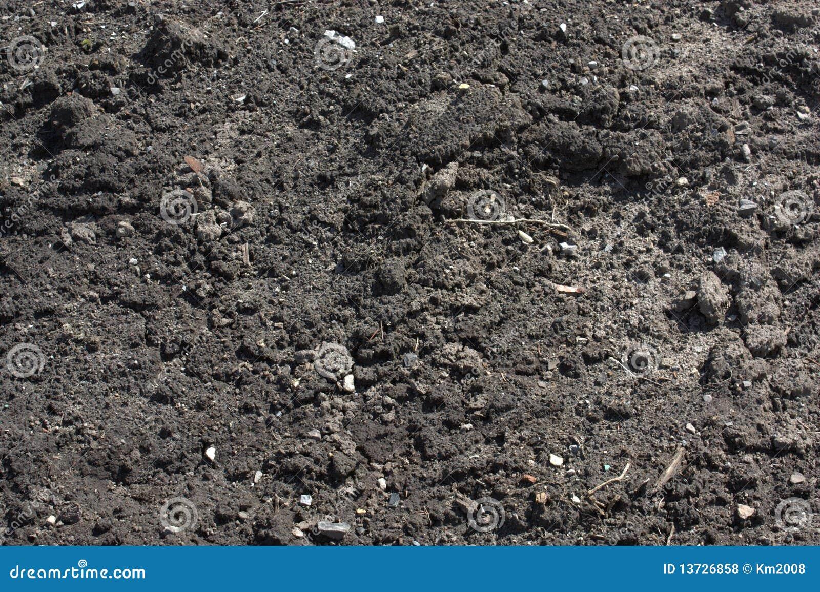 Garten Boden Stockfoto Bild Von Boden Garten Schmutz 13726858