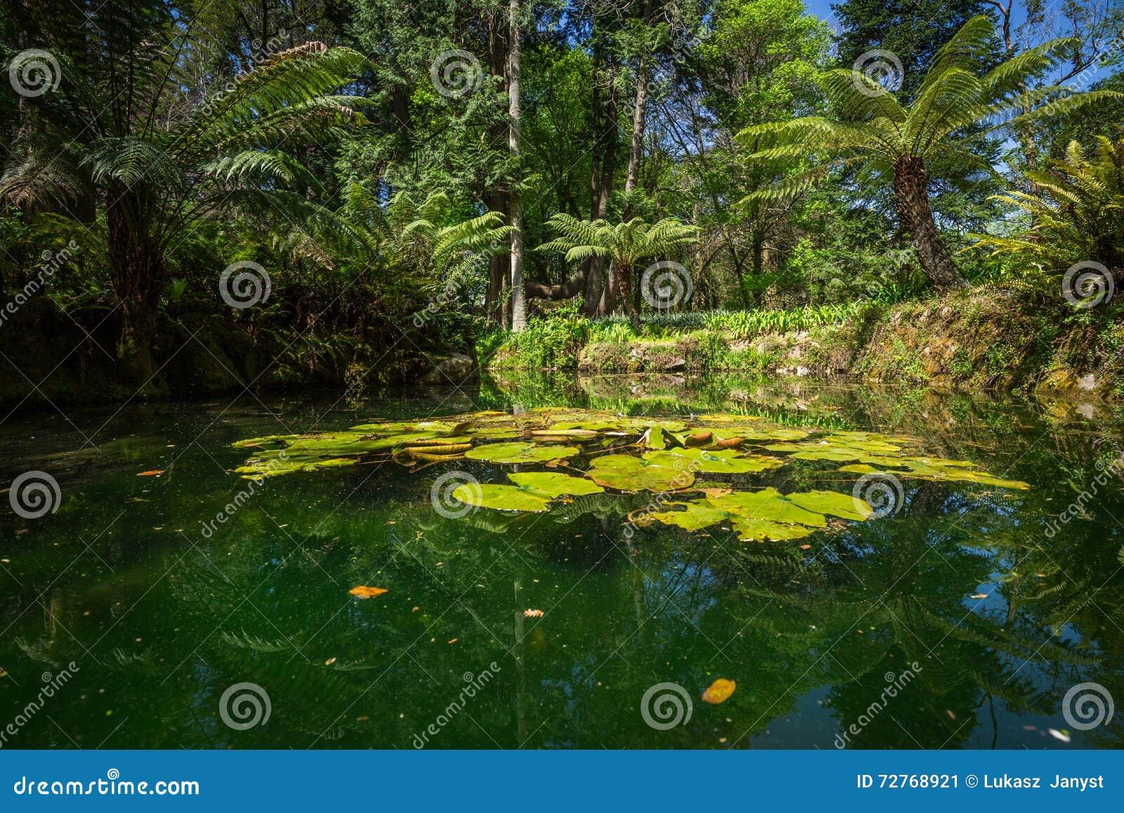 Garten Eden Garten Gelegen In Sintra Portugal Stockbild Bild Von