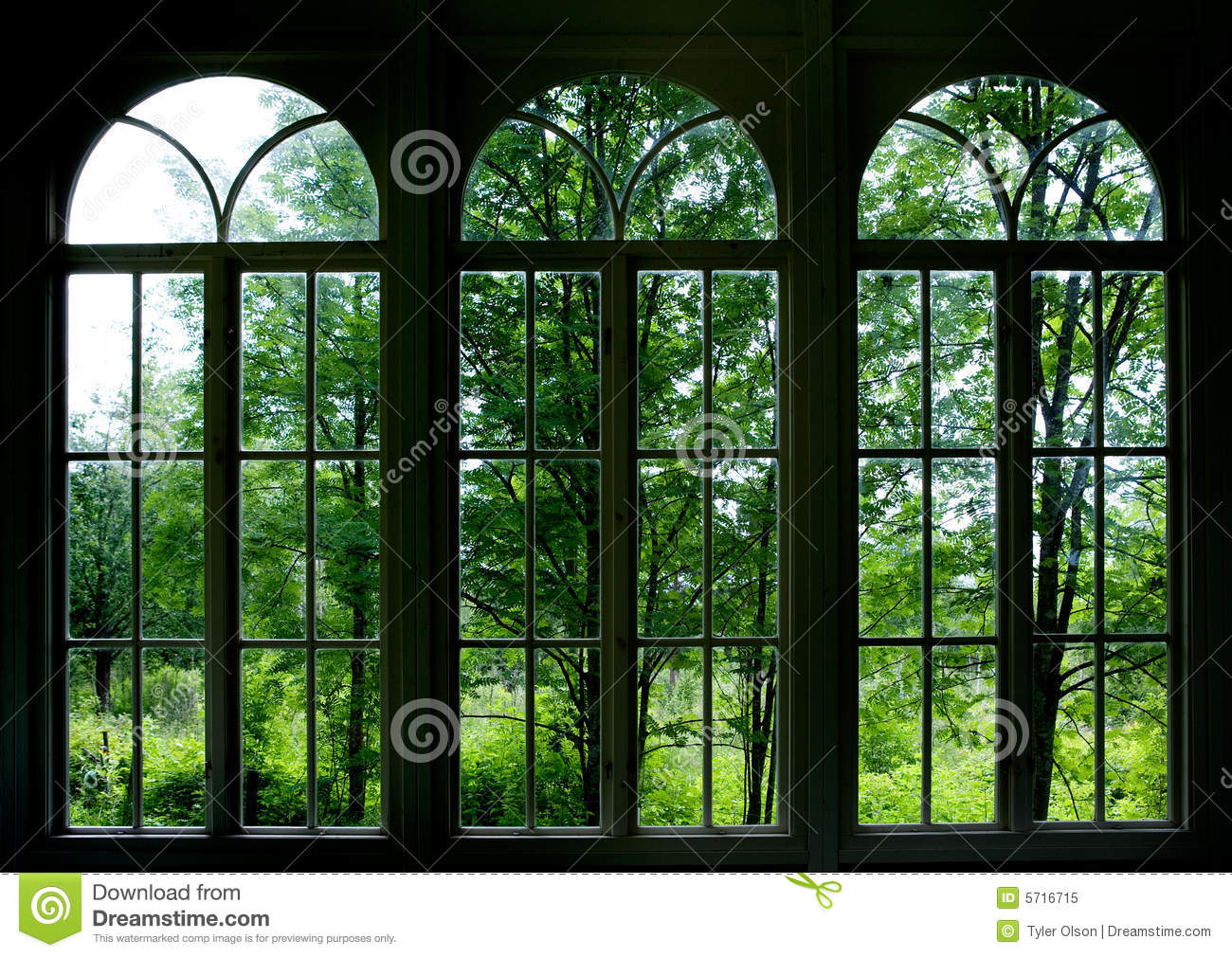 garten fenster stockbild bild von fenster nave panel 5716715. Black Bedroom Furniture Sets. Home Design Ideas