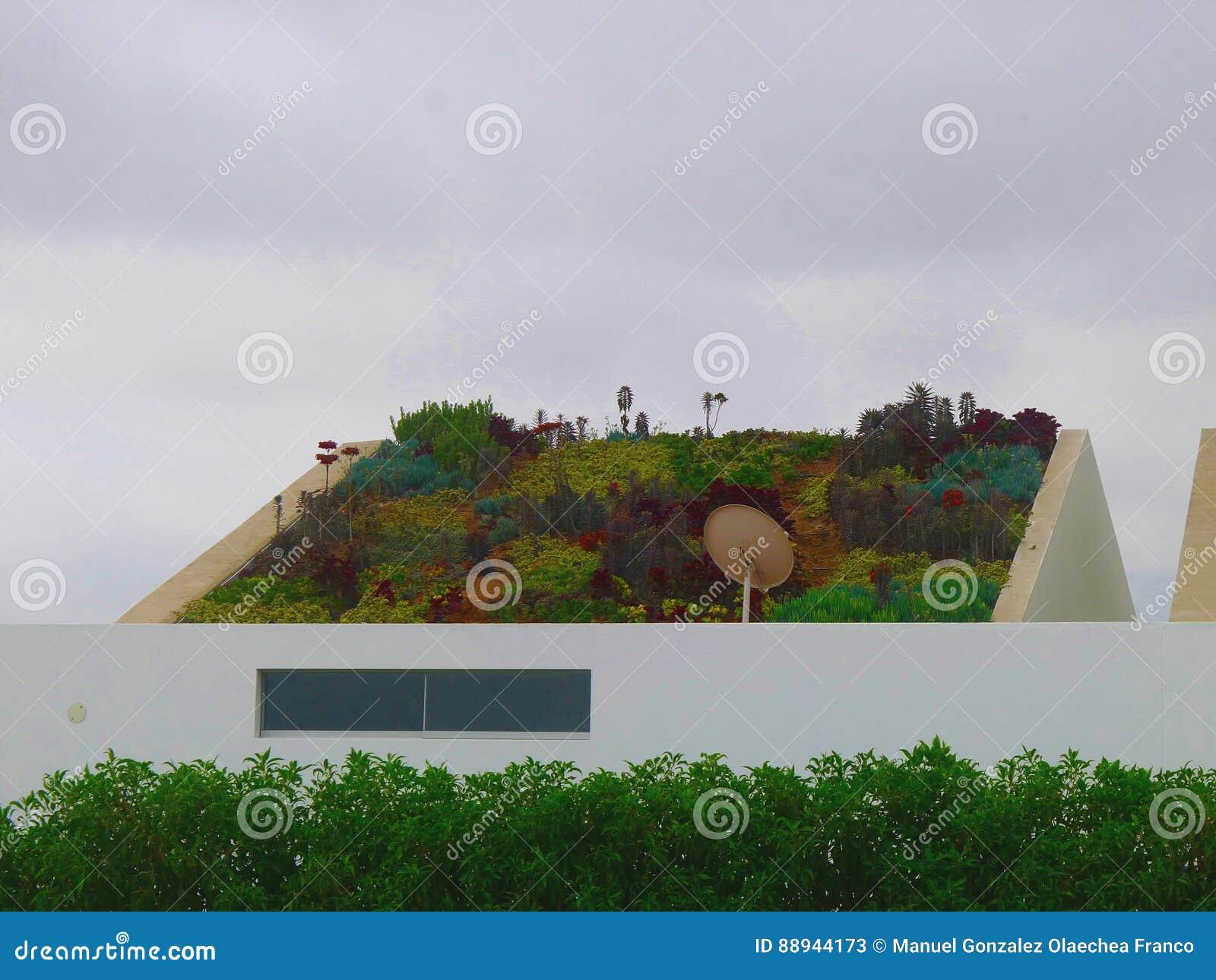 Hervorragend Download Garten Gepflanzt Auf Dem Schrägen Dach Eines Modernen Hauses  Stockbild   Bild Von Garten,