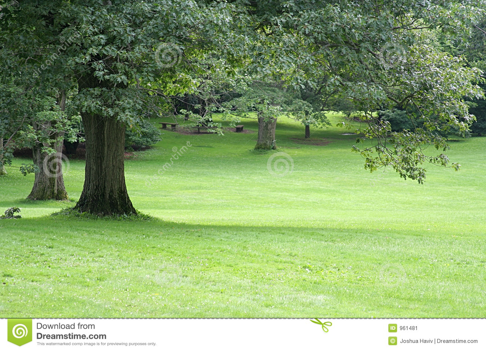 Garten Landschaft Stockbild Bild Von Hintergrund Field 961481
