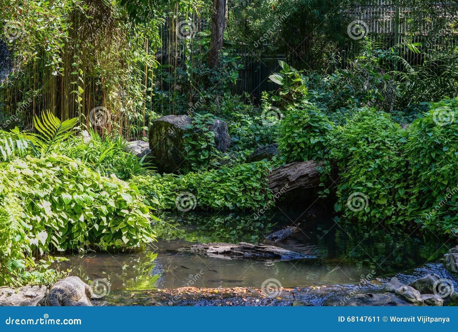 Garten mit Anlagen