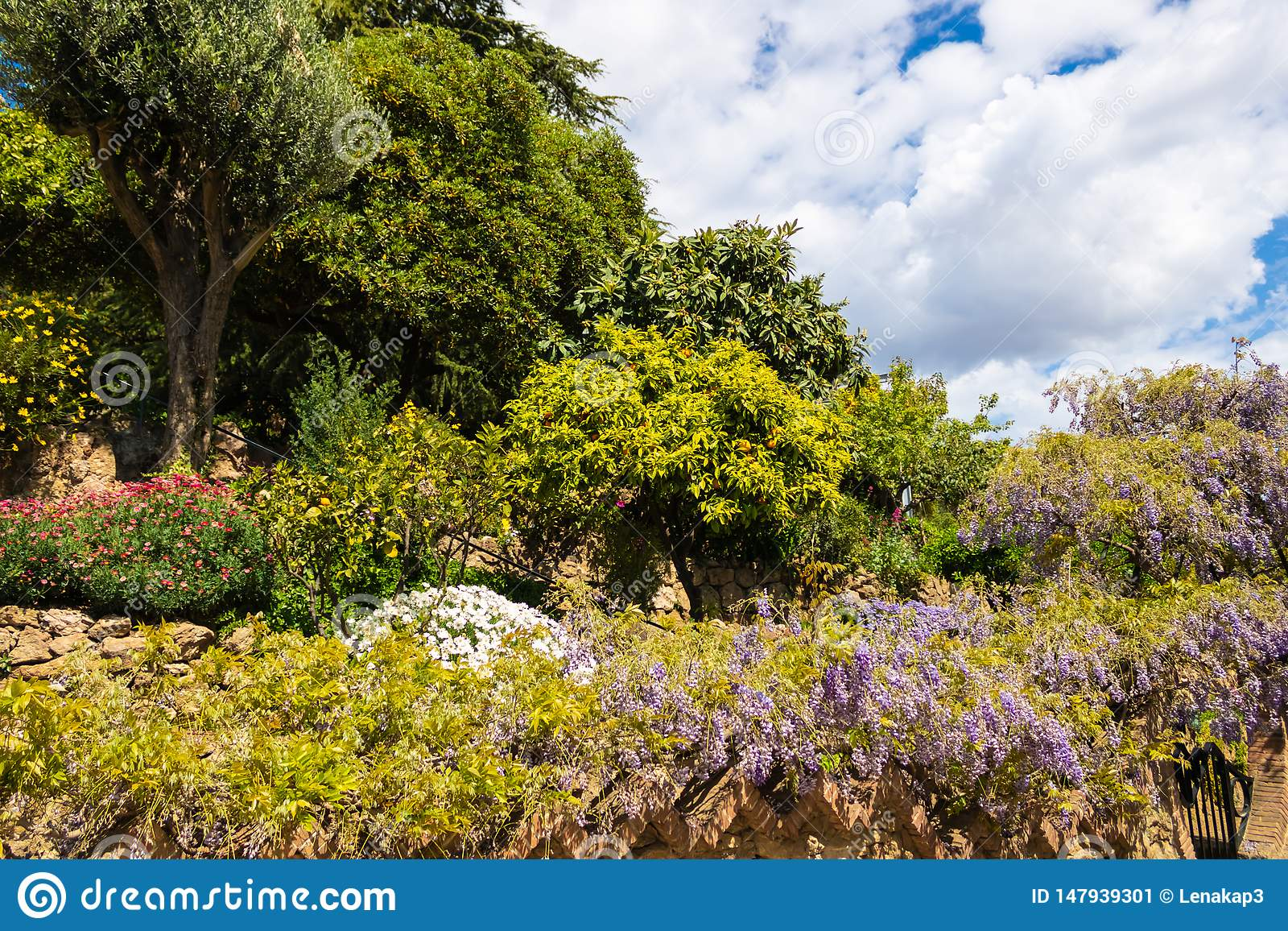 Garten mit verschiedenen Blumen und Anlagen in Park GÃ ¼ EL, Barcelona - Bild