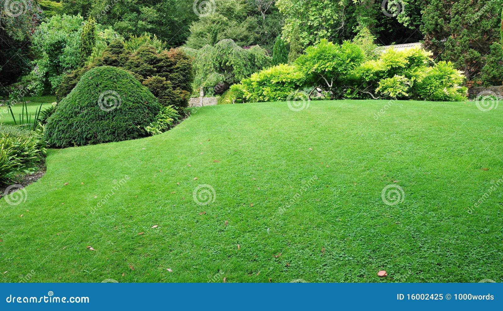 Garten rasen stockbild bild von invest g rten auslegung for Garten rasen
